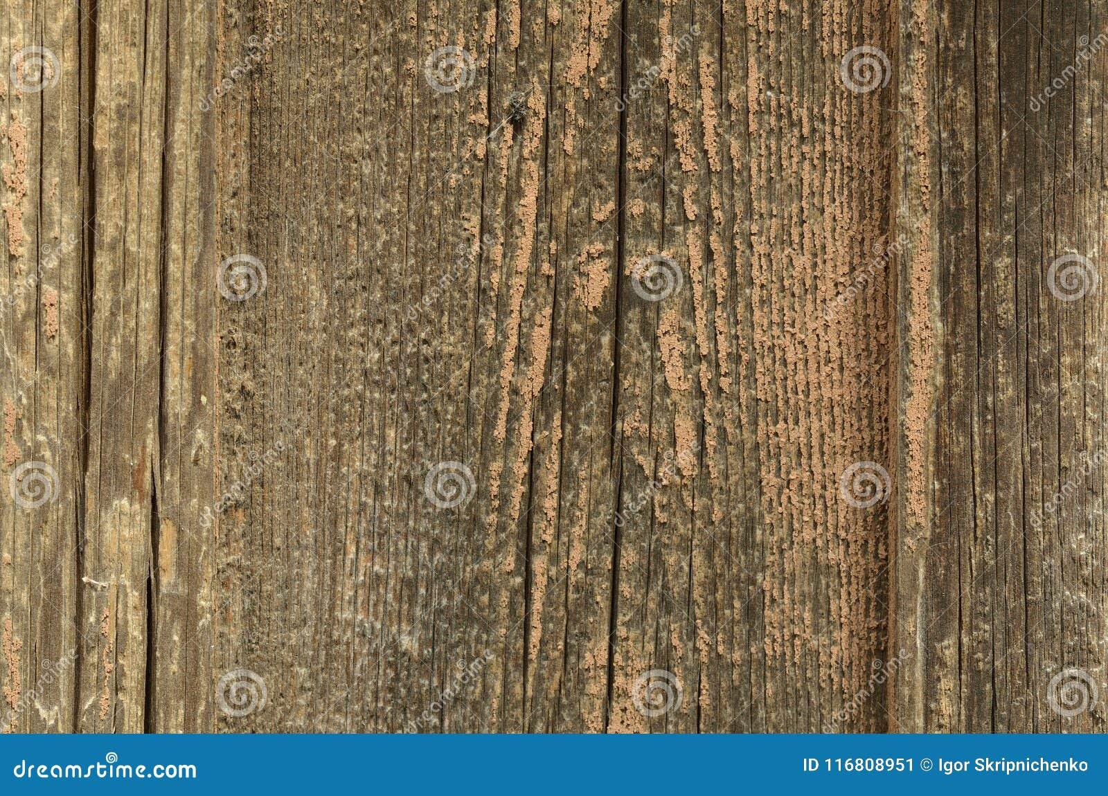 Un vecchio bordo di legno approssimativo senza pittura, una struttura