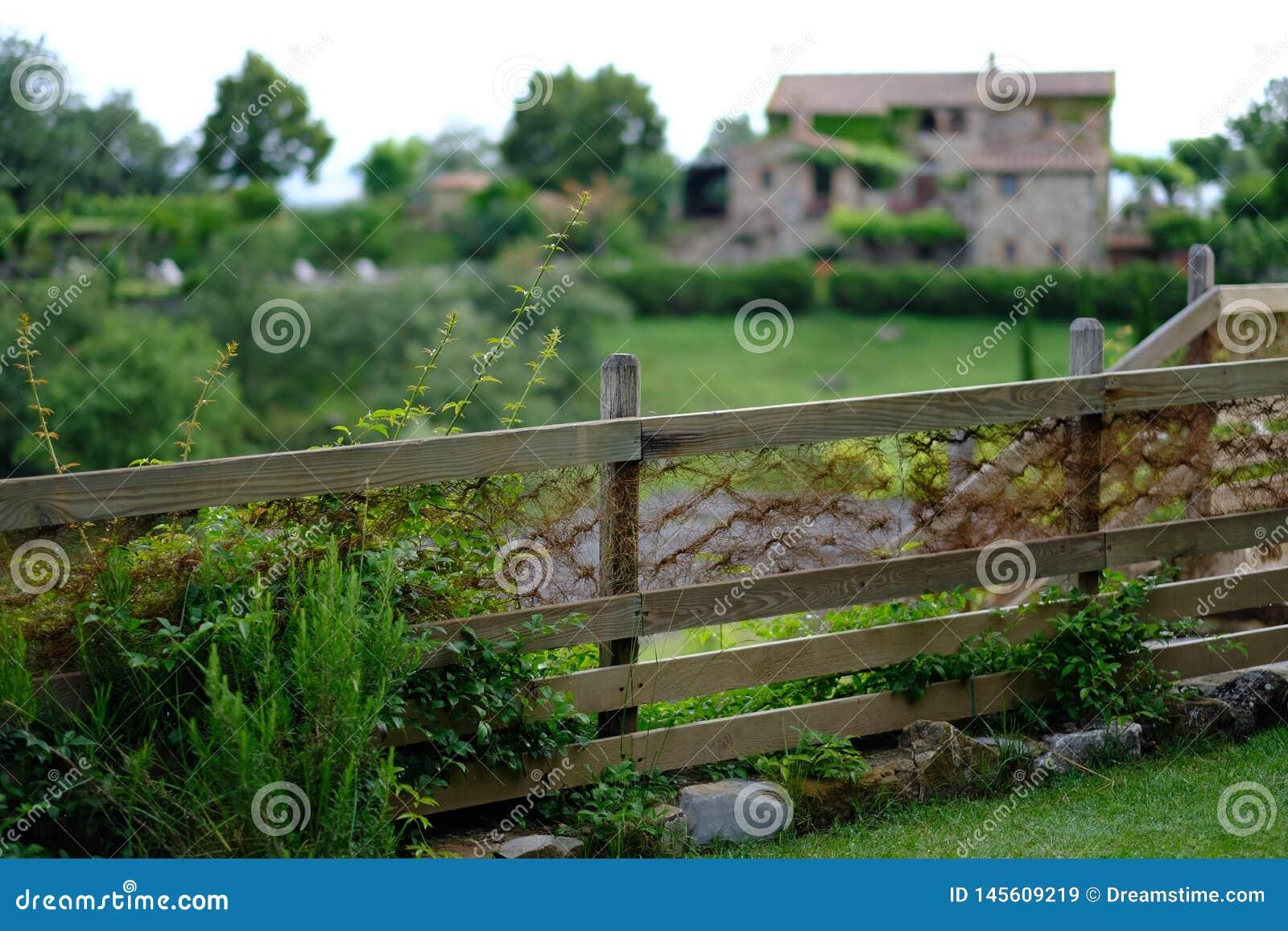 Un verde fertile recinta la Toscana