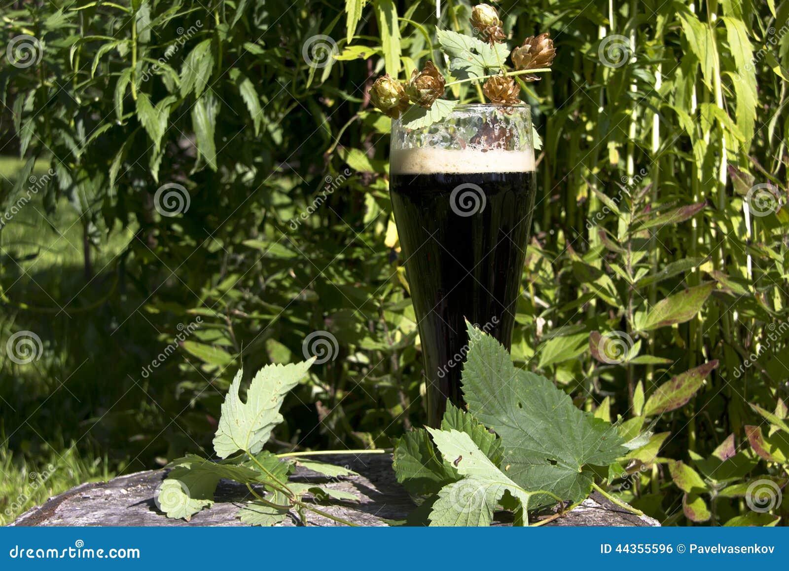 Un vetro di birra scura
