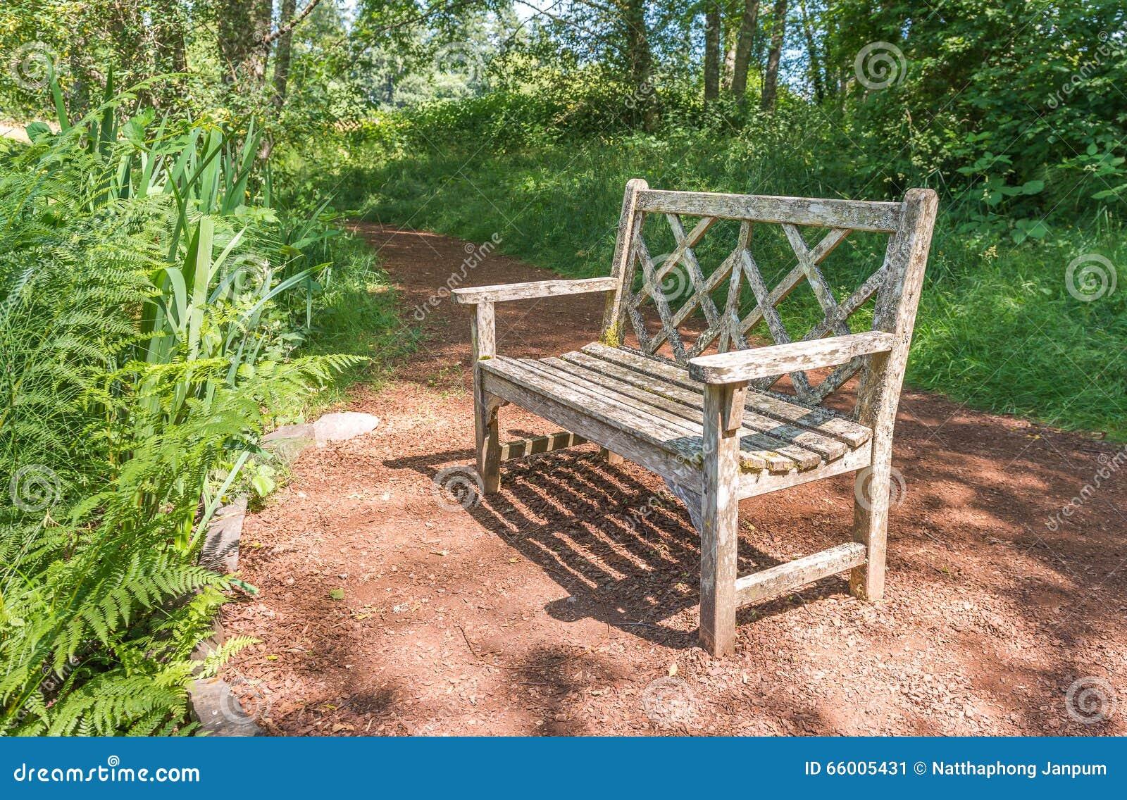 Un Vieux Banc En Bois Dans Le Beau Jardin Botanique Avec L\'ombre De ...