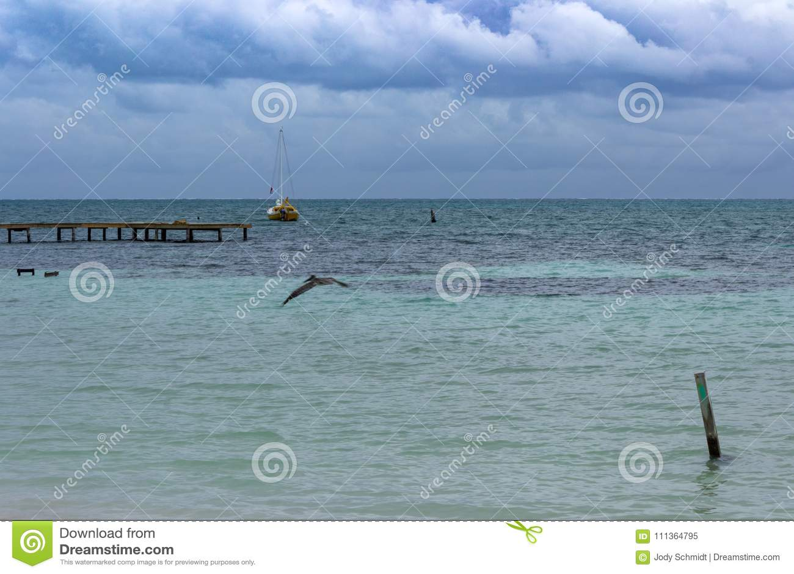Un voilier se trouve à l ancre outre de la côte du matoir de Caye, Belize