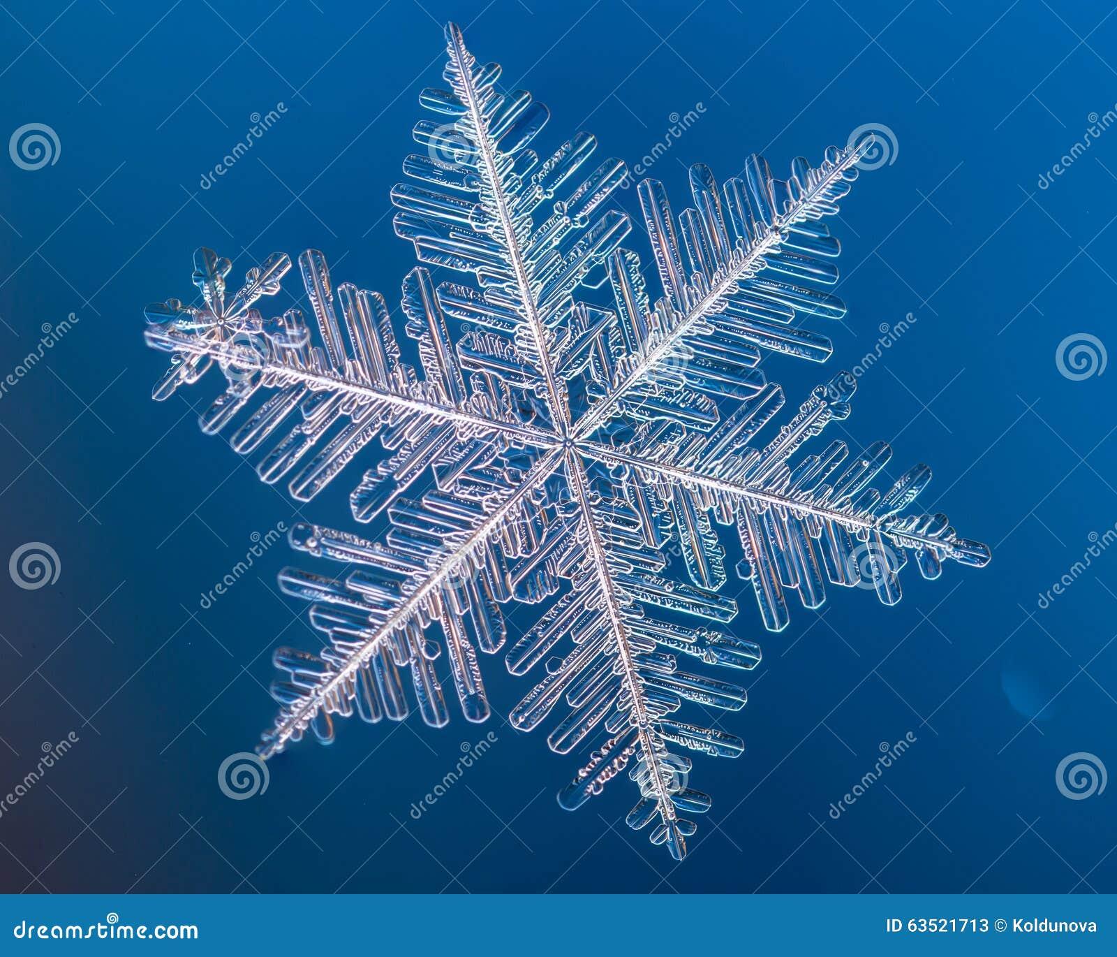 Un vrai macro de flocon de neige se trouve sur un fond bleu image stock image du claille - Gabarit flocon de neige a decouper ...