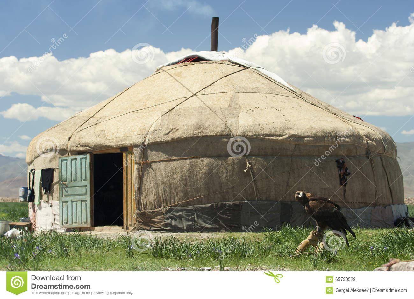 Un yurt et un aigle de chasse