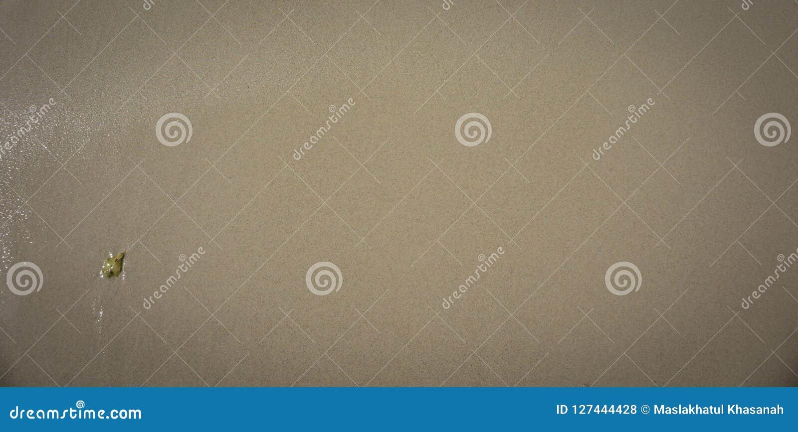 Una arena blanca marrón en la playa con la pequeña roca como backrgound o el papel pintado con las arenas muy limpias