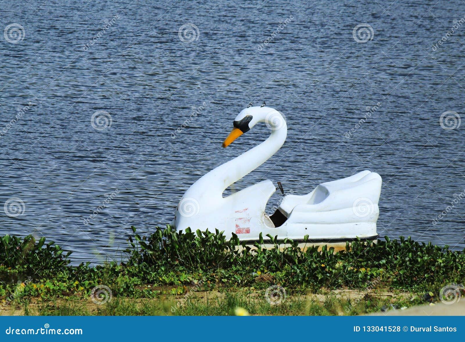 Una barca del pedale per una passeggiata nella laguna