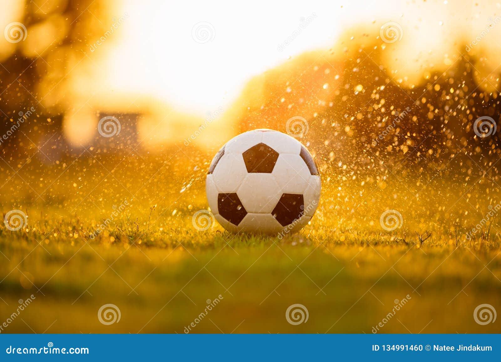 Una bola en el campo de hierba verde para el partido de fútbol del fútbol debajo de la luz y de la lluvia del rayo de la puesta d
