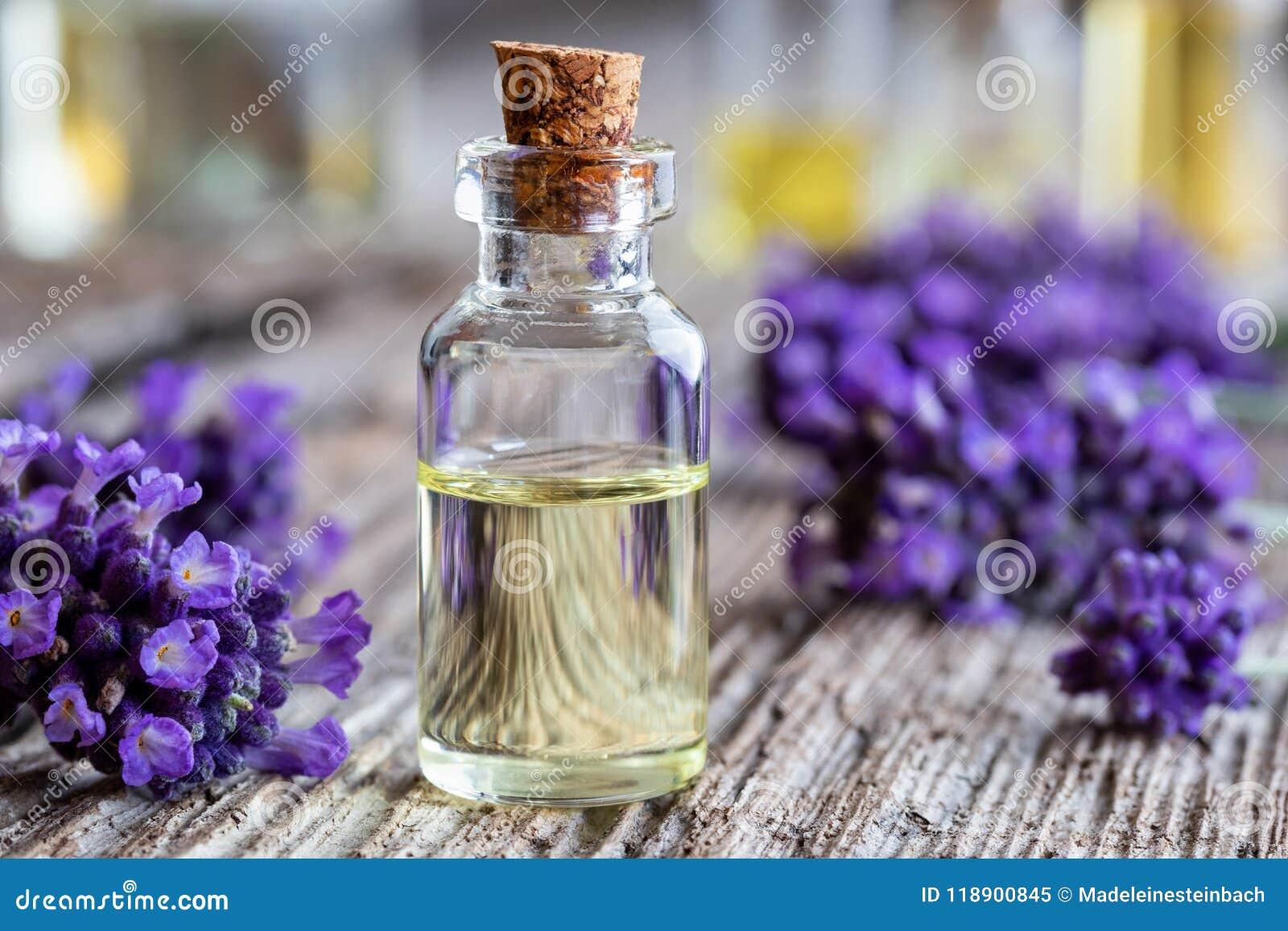 Una bottiglia dell olio essenziale della lavanda con lavanda fresca fiorisce
