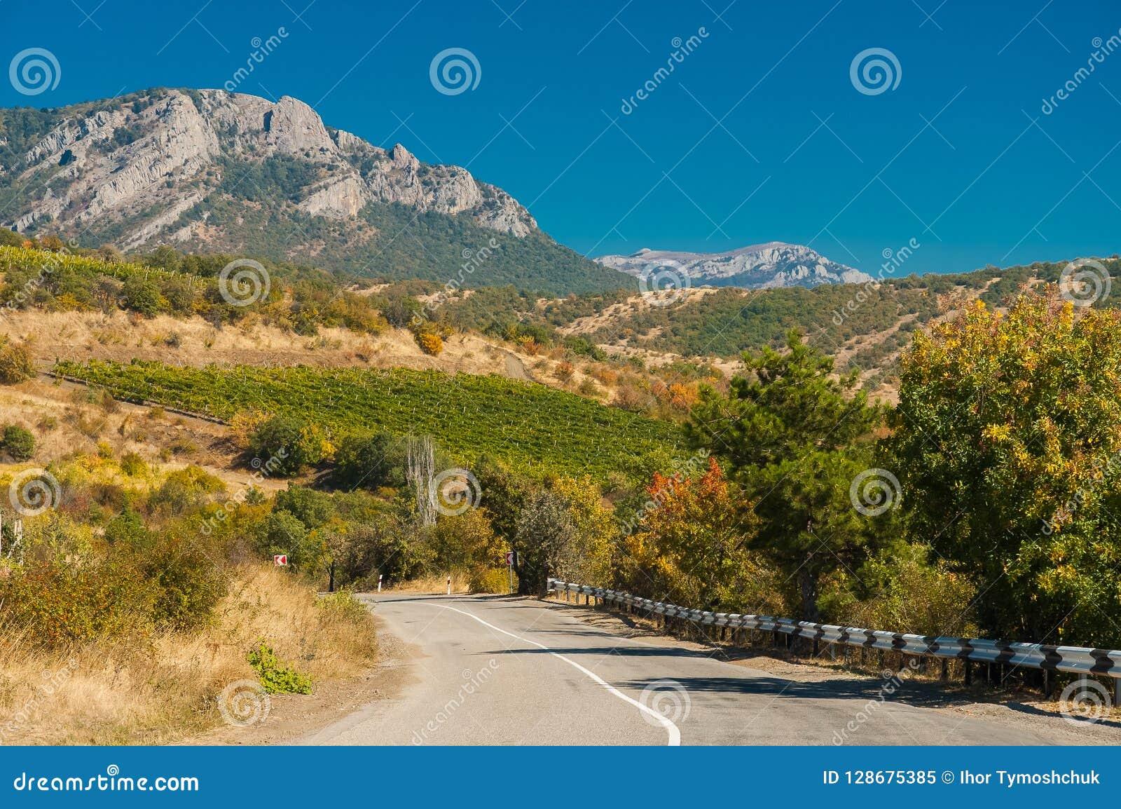 Una carretera con curvas contra el contexto de viñedos