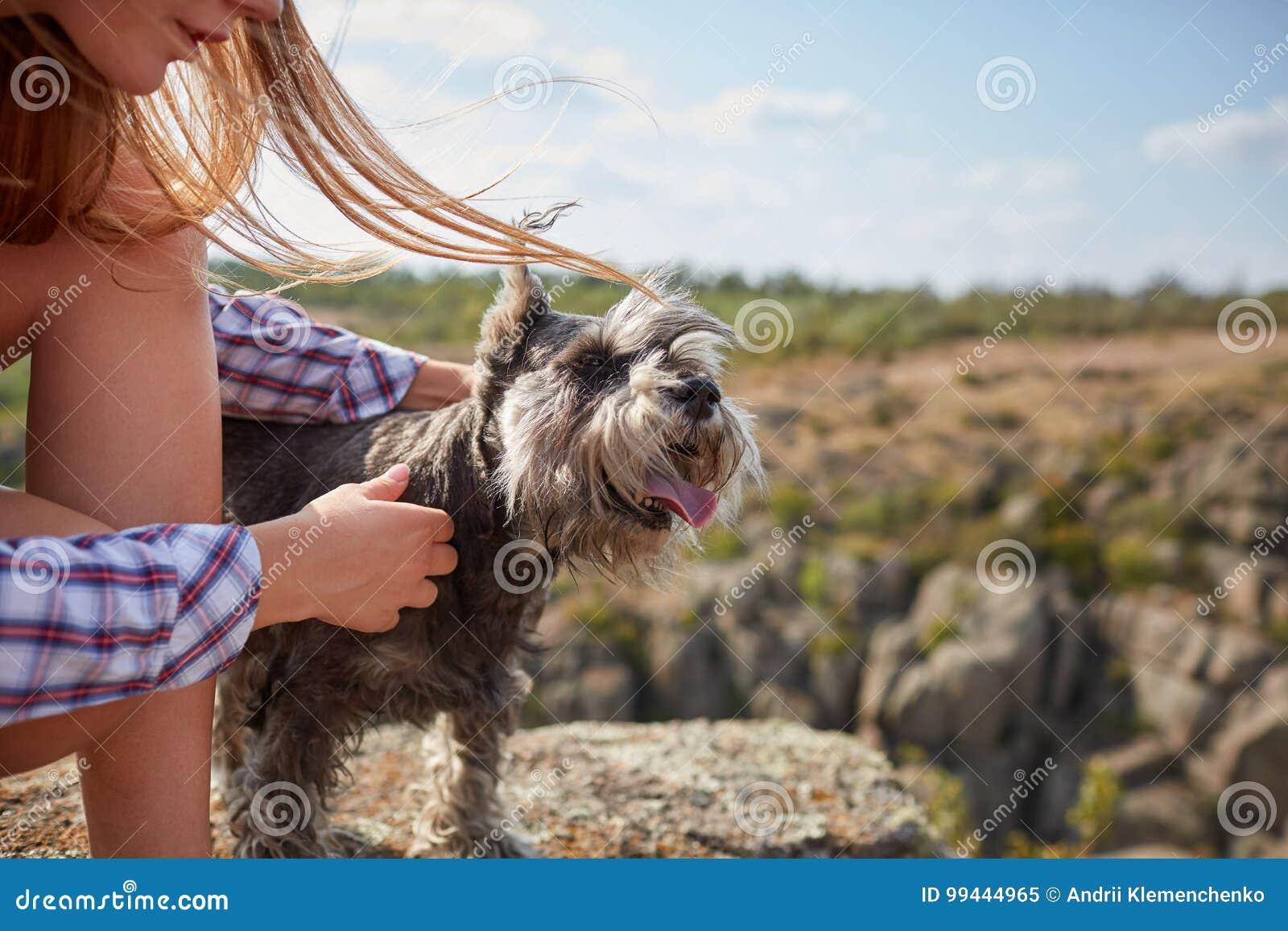 Una chica joven que acaricia su perro en un fondo natural borroso Un pequeño perro en manos femeninas, primer