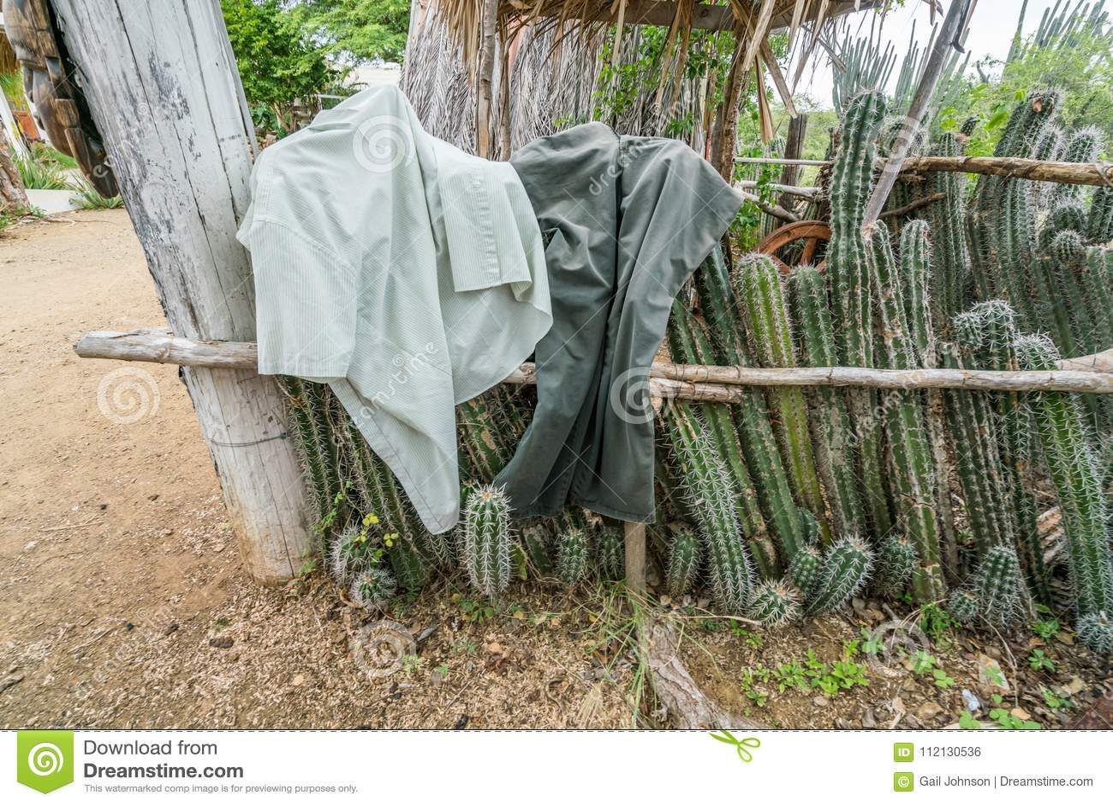 Una choza auxiliar vieja - cerca del cactus con lavarse en él