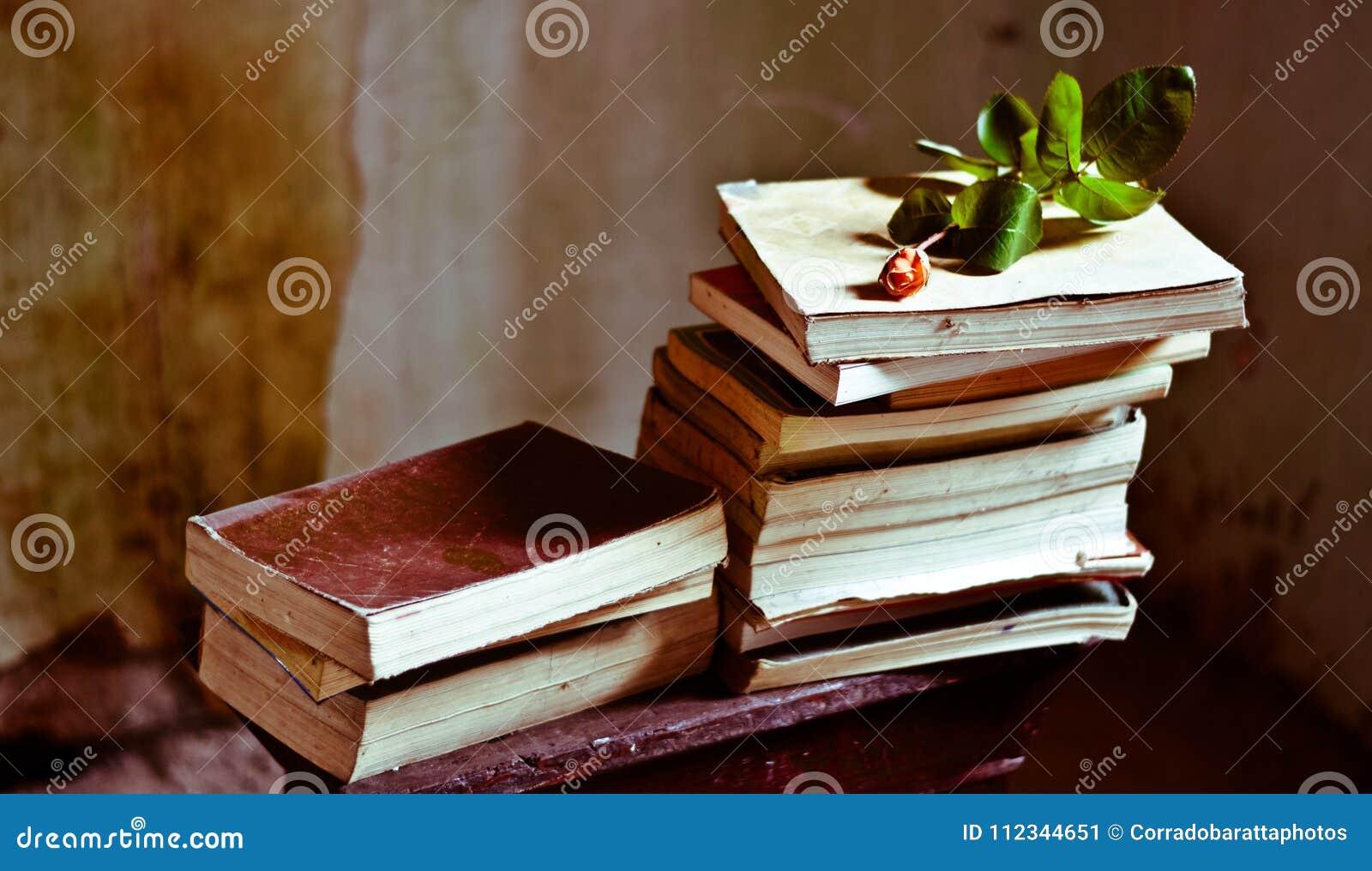 Una collezione di romanzi di amore