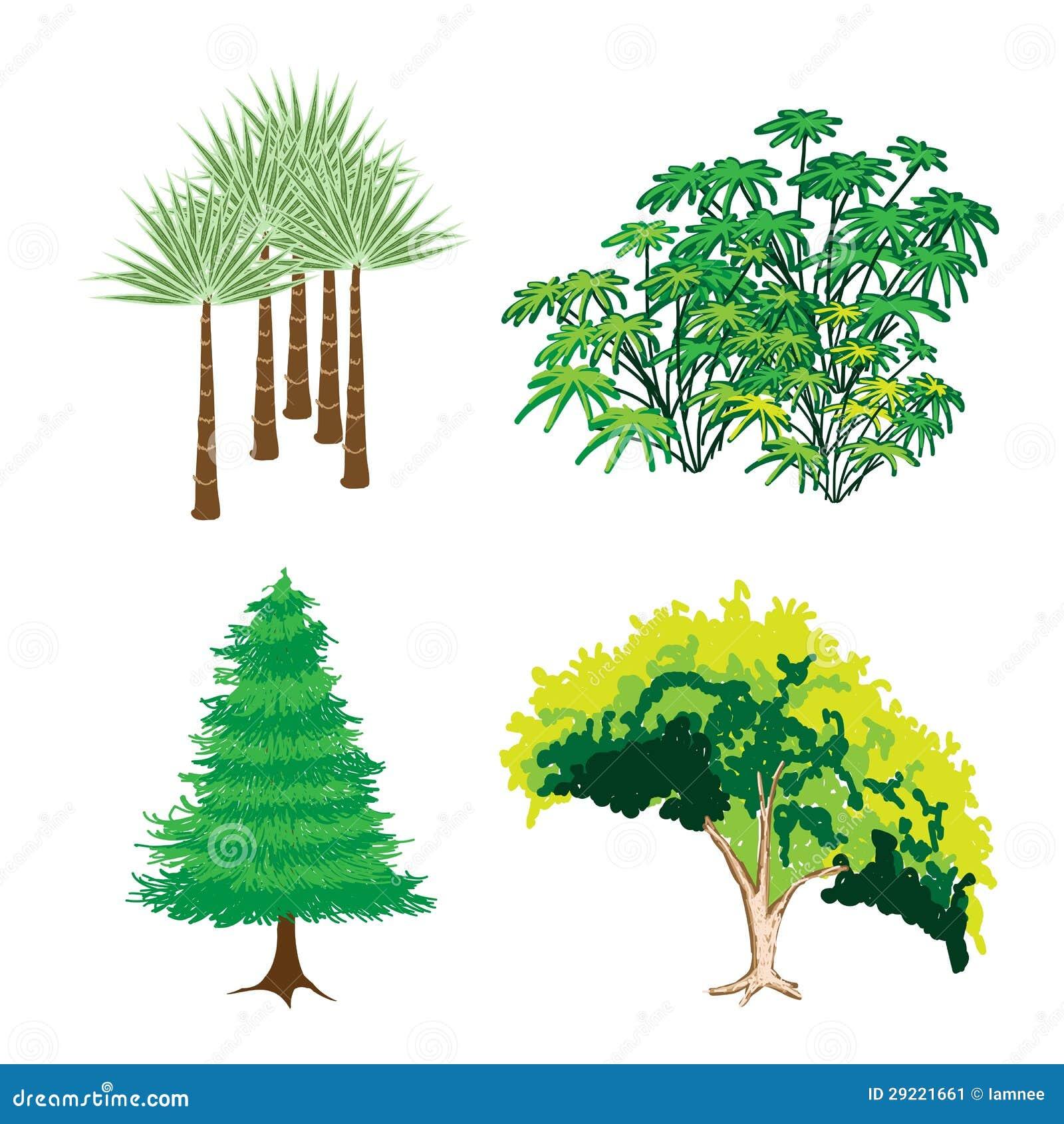 Immagini Di Piante E Alberi una collezione isometrica di alberi e di piante verdi