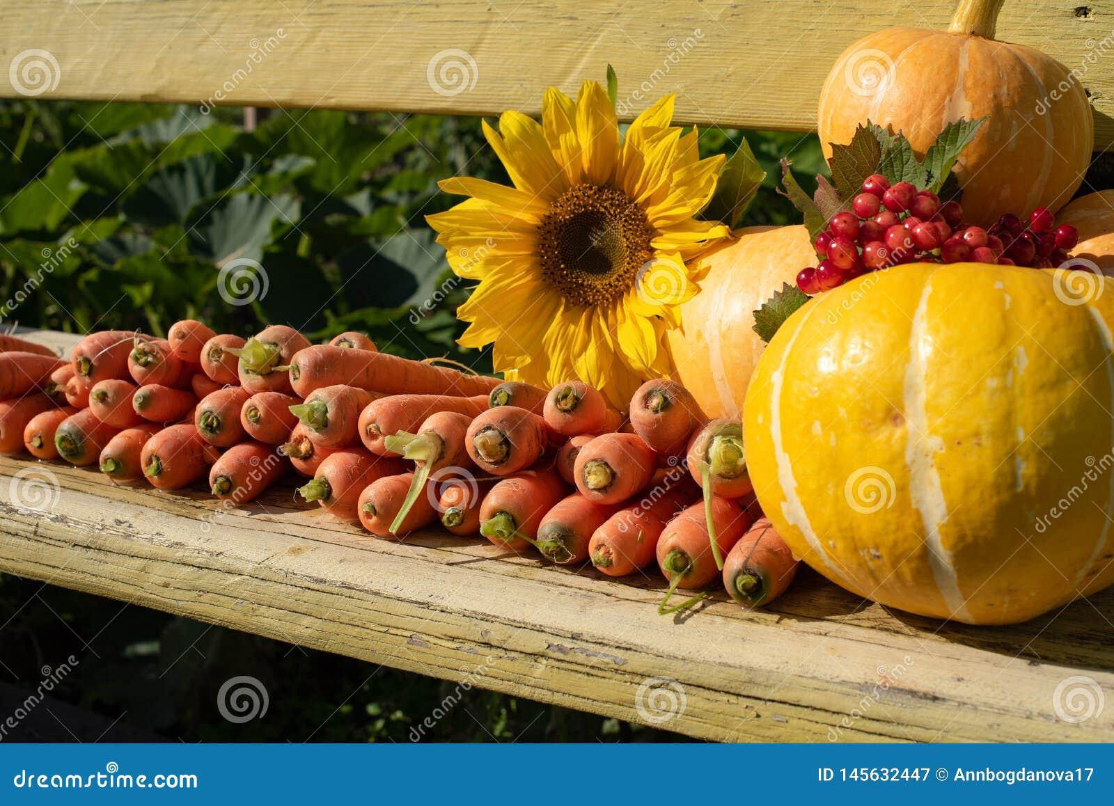 Una cosecha de verduras frescas miente en un banco en el aire abierto