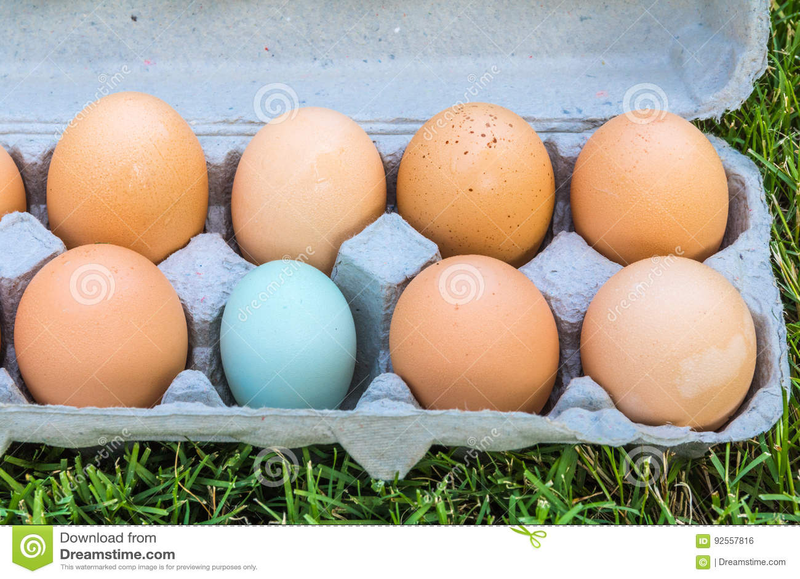 Una di queste uova non è come le altre
