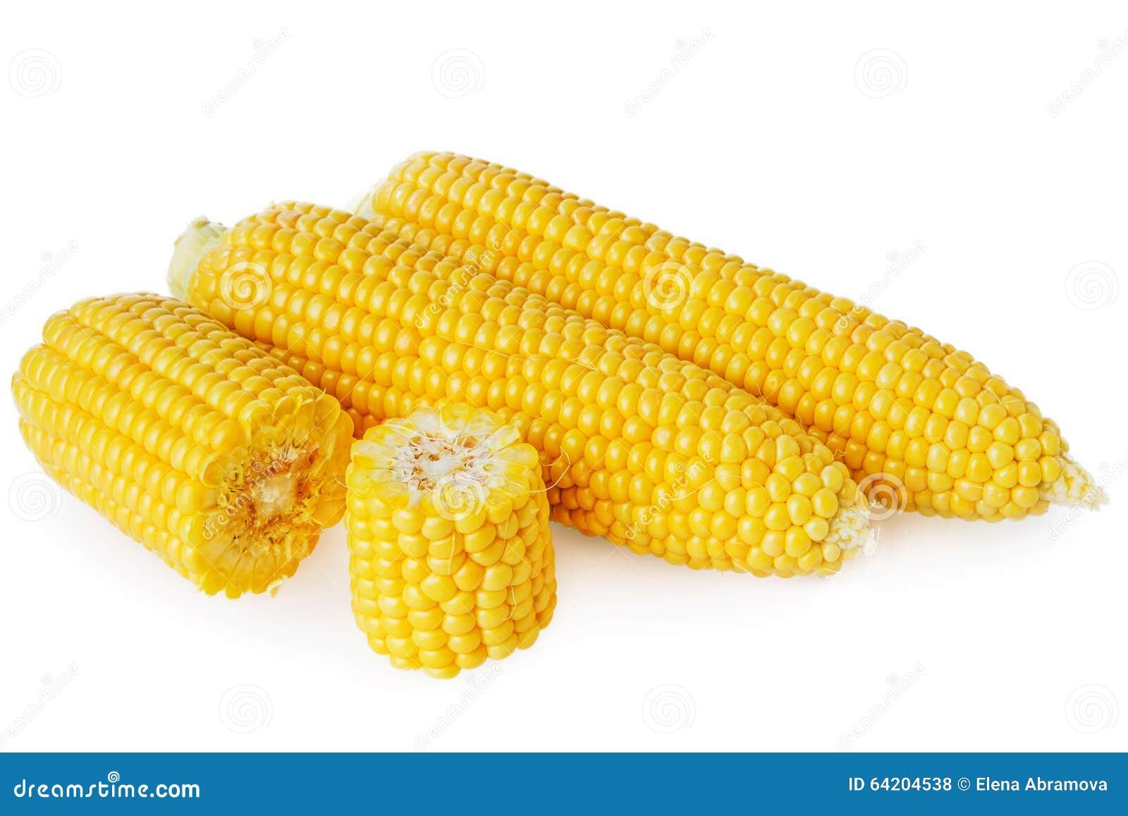 Una espiga de trigo aislada en un fondo blanco