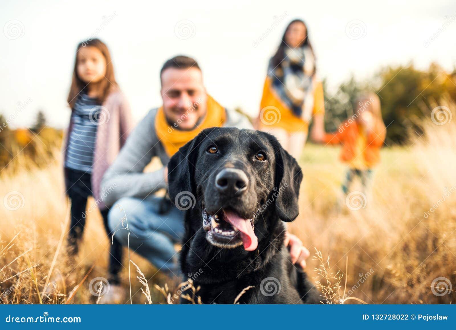 Una familia joven con dos pequeños niños y un perro en un prado en naturaleza del otoño
