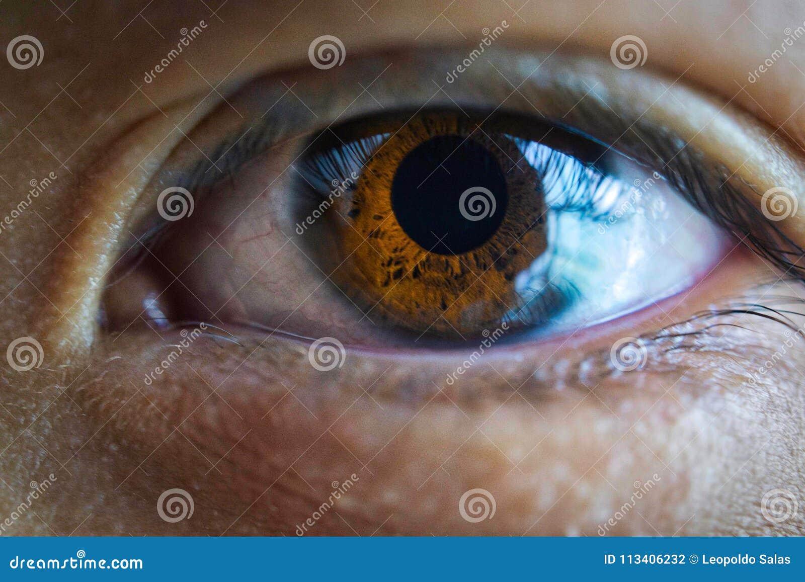 Una fine su di un occhio marrone