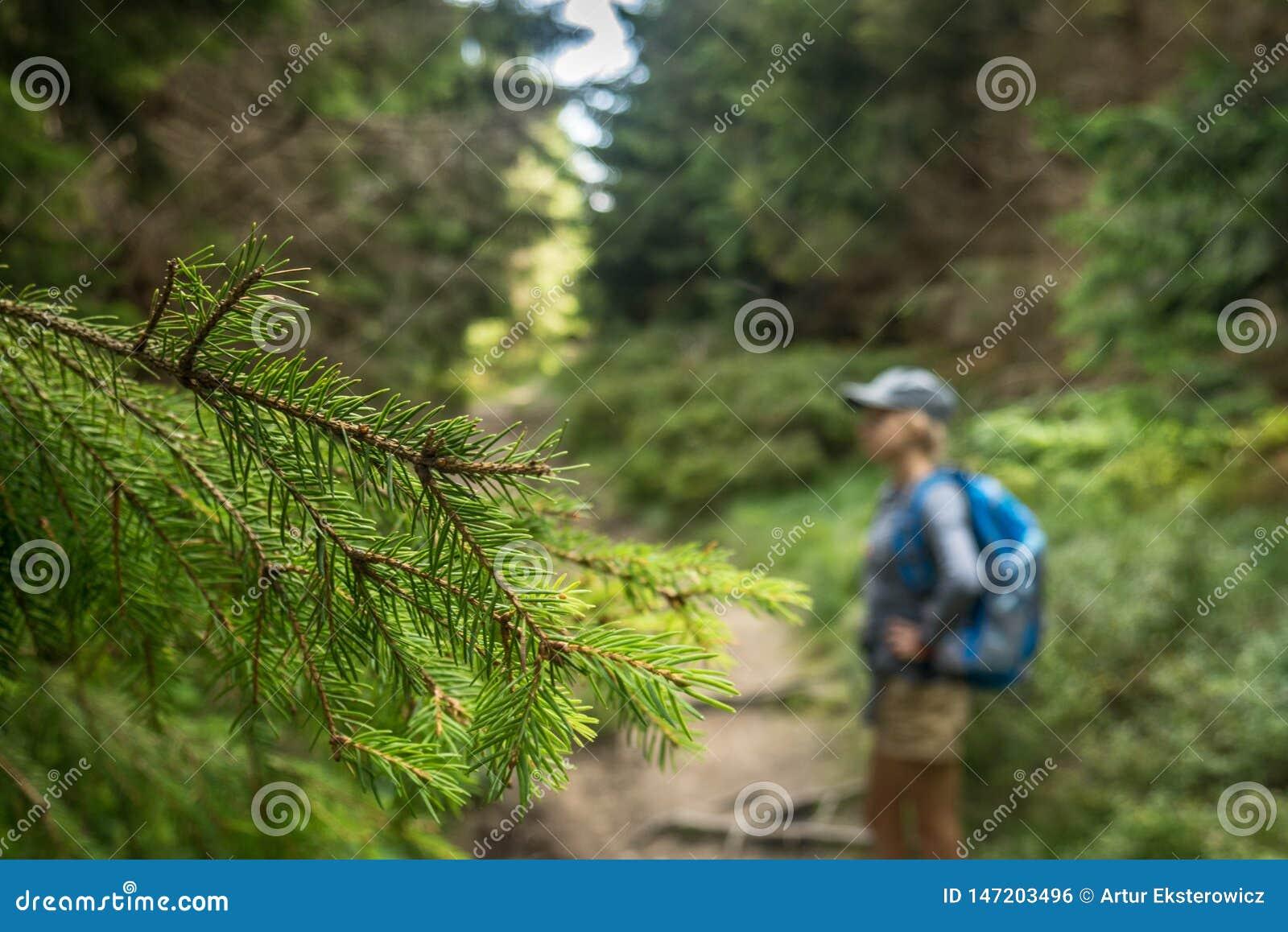 Una foto de una muchacha feliz que camina a lo largo de un rastro de montaña