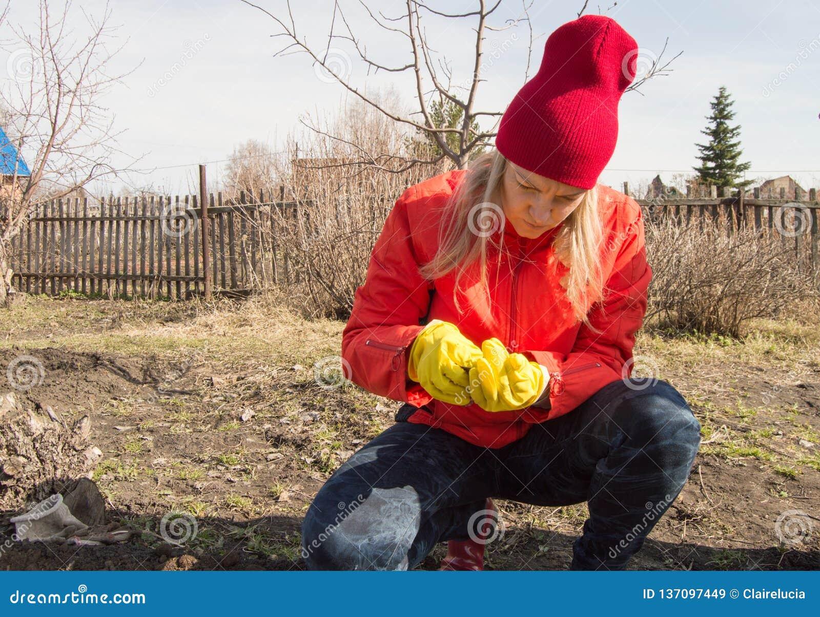 Una giovane donna esamina con attenzione i semi prima della piantatura nel suolo nel giardino un giorno di molla
