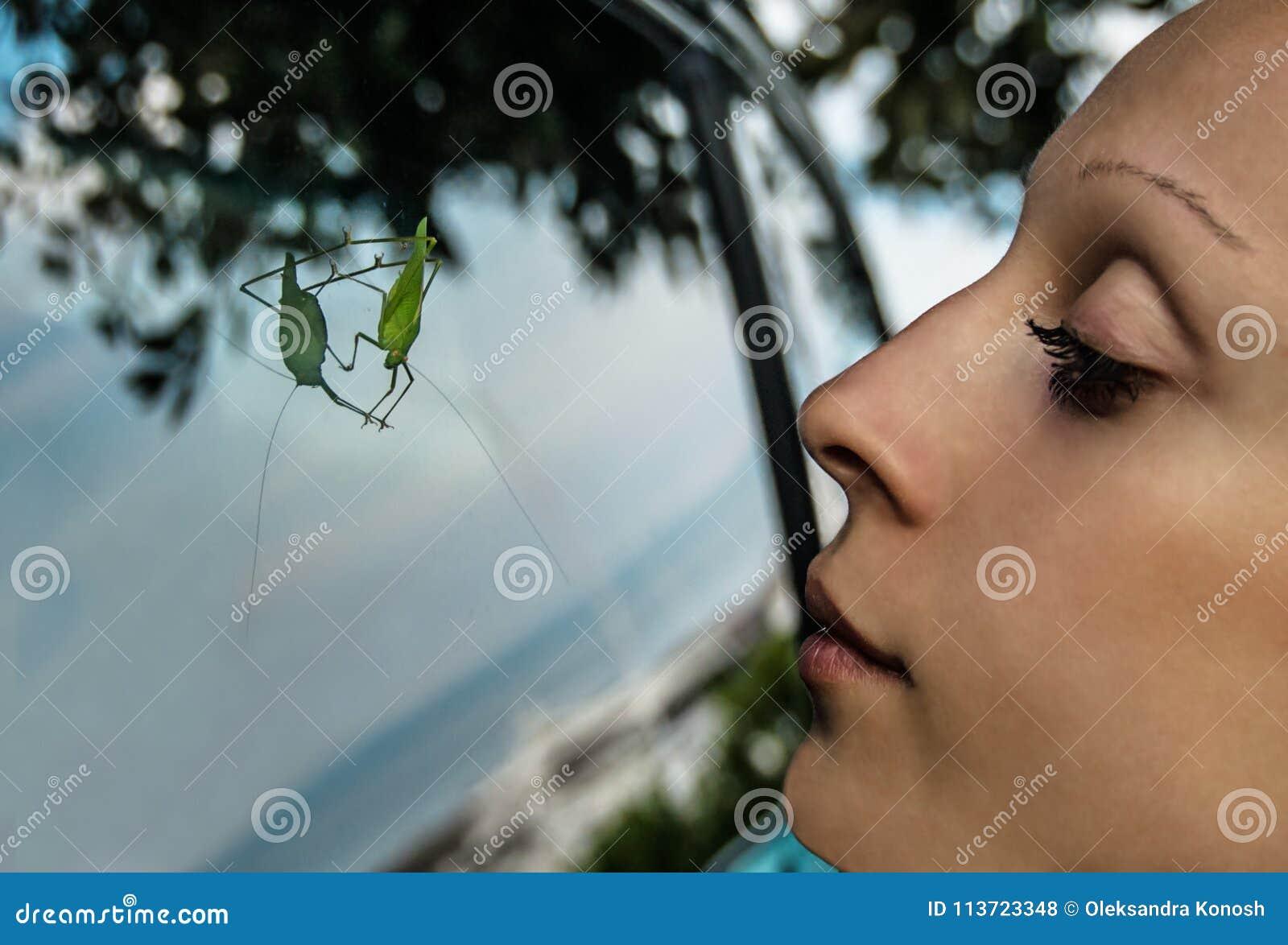Una giovane donna esamina un grosshopper verde che si siede sulla finestra laterale di un - Finestra che si apre ...
