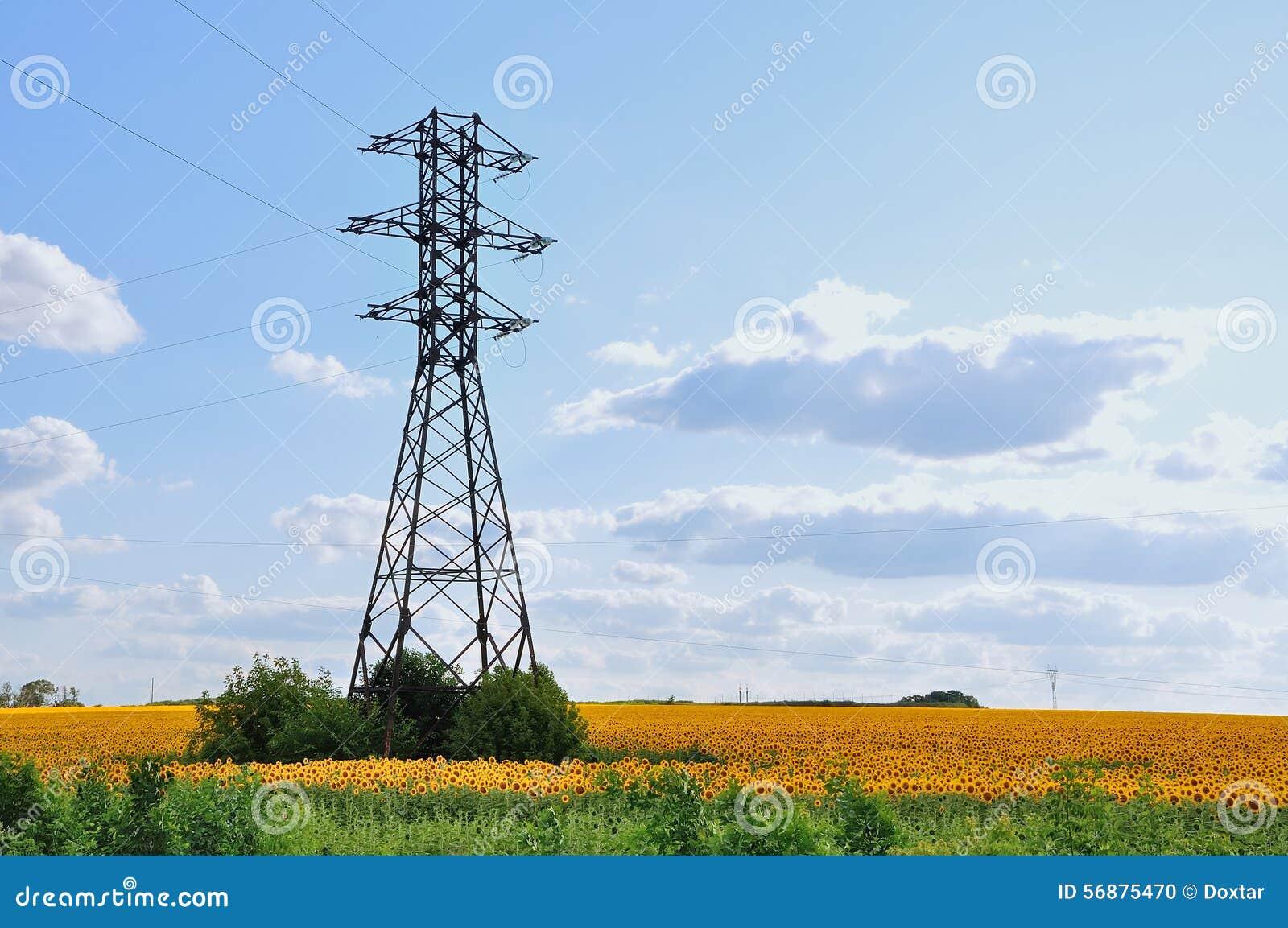 Una linea ad alta tensione nel campo dei girasoli