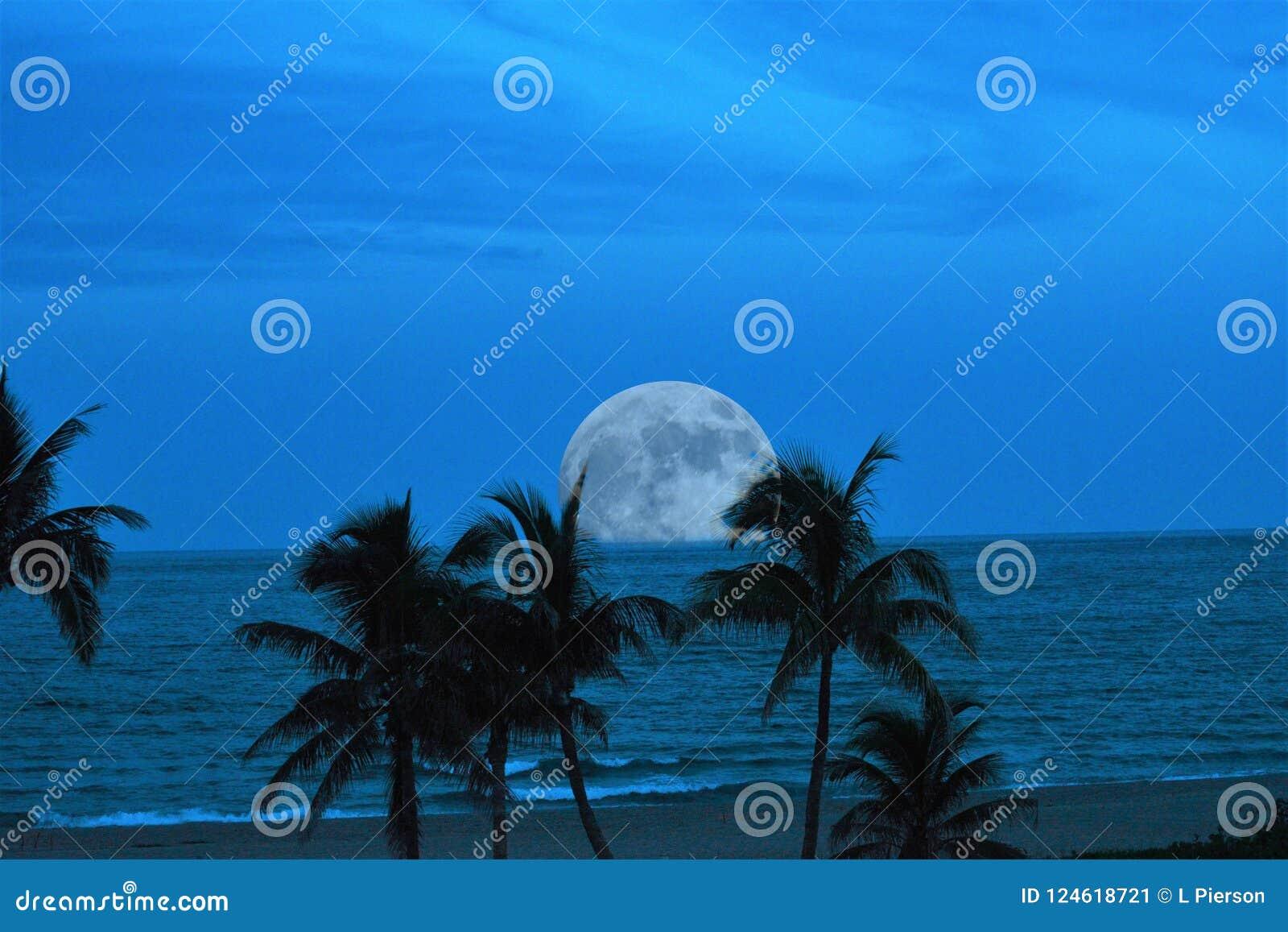 Una Luna Llena virtual hace una entrada espectacular al cielo crepuscular sobre el océano tropical abajo