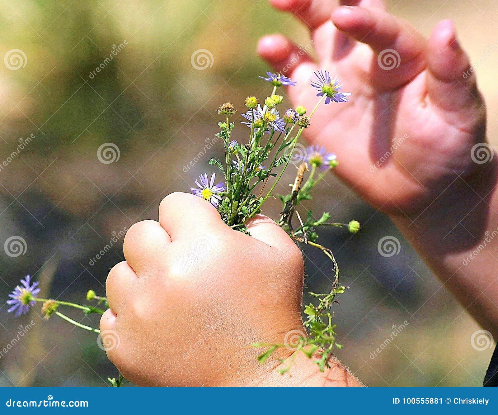 Una mano del ` s del bambino