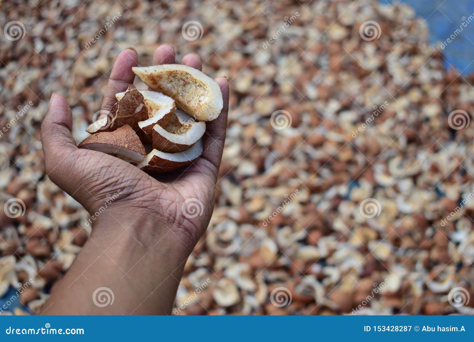 Una mano por completo de los pedazos secados del coco