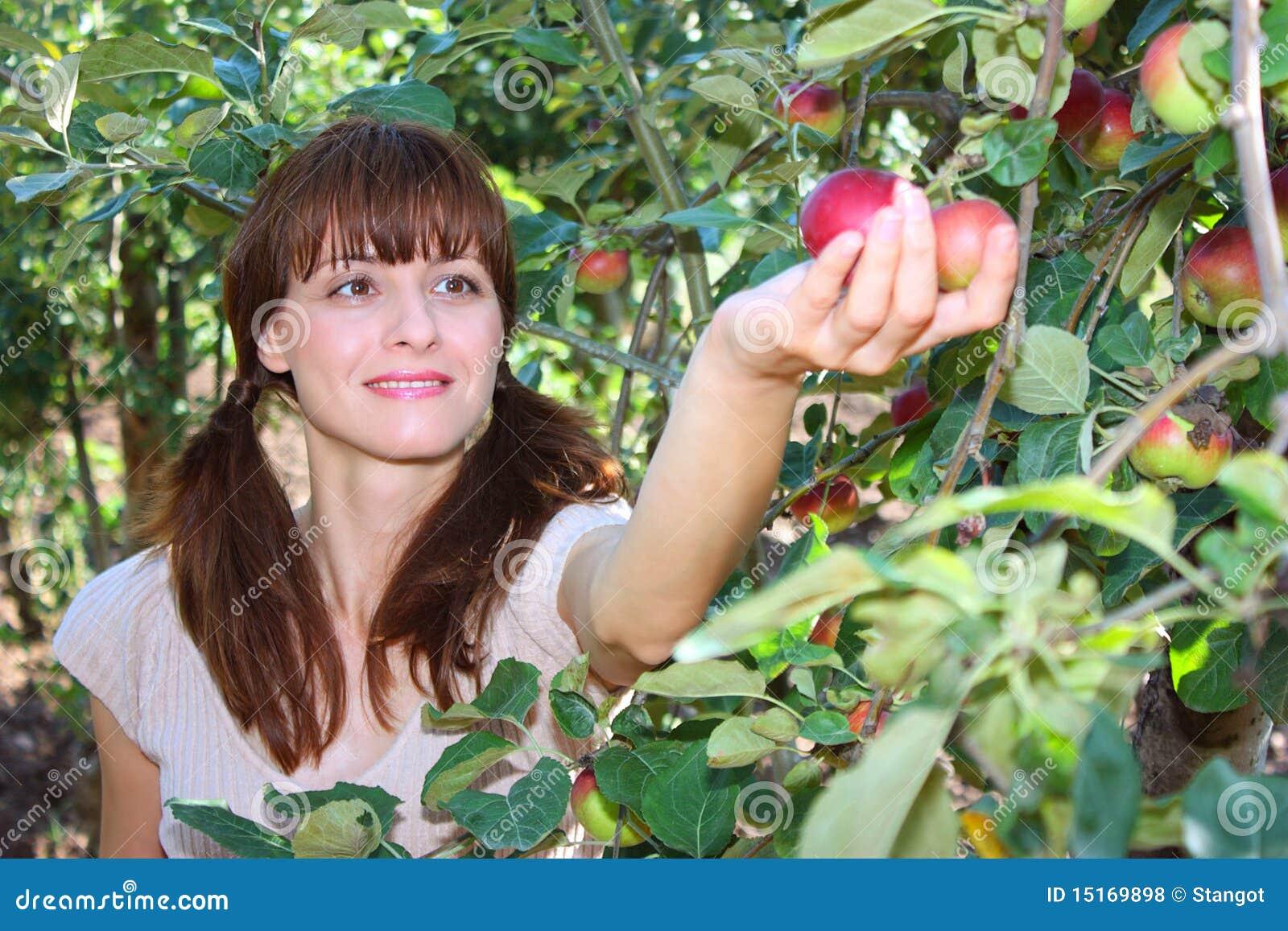 Una mela di raccolto della donna