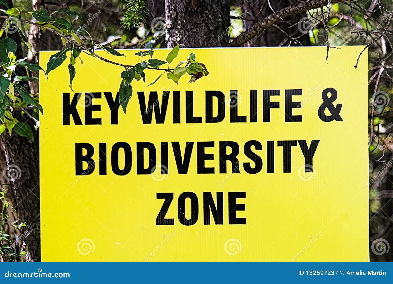 Una muestra dominante de la zona de la fauna y de la biodiversidad