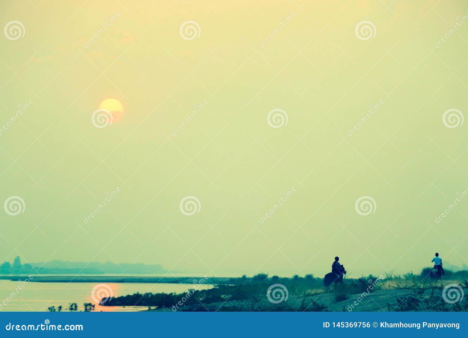Una mujer joven y un hombre gozan el montar en el caballo en la playa a lo largo de la orilla hacia la dirección de la puesta de