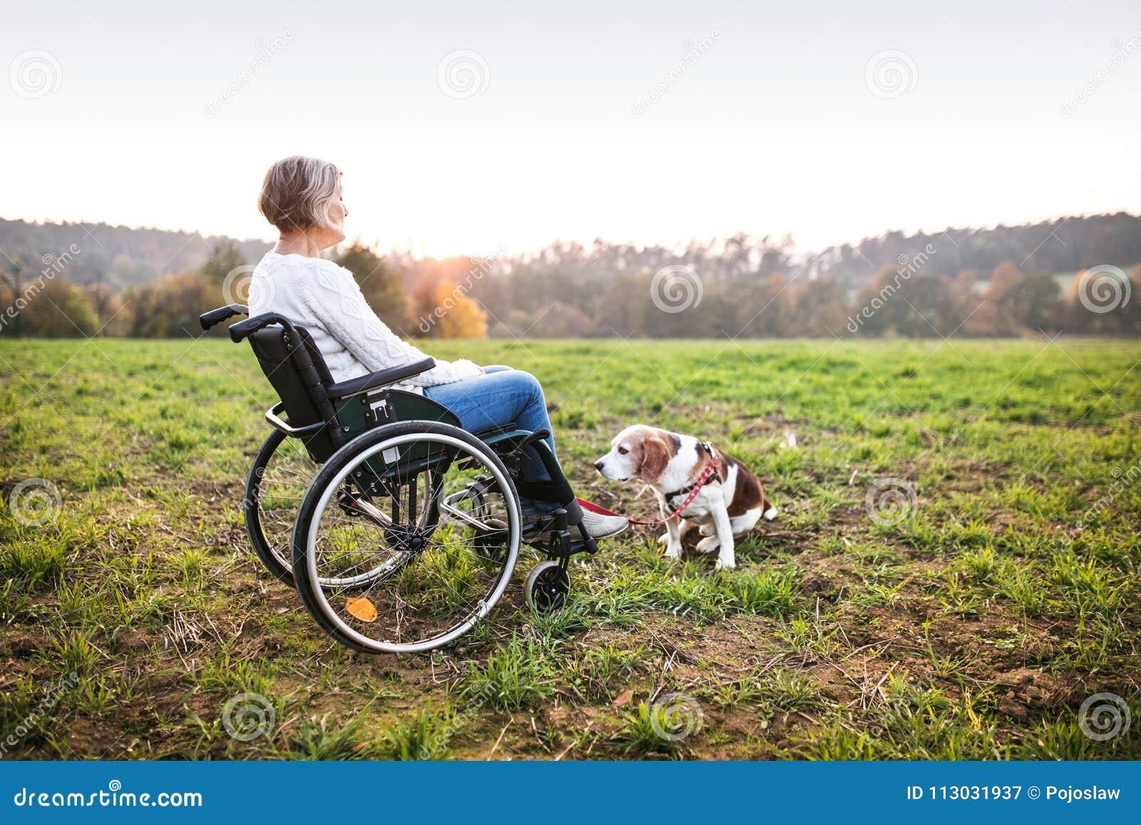 Una mujer mayor en silla de ruedas con el perro en naturaleza del otoño