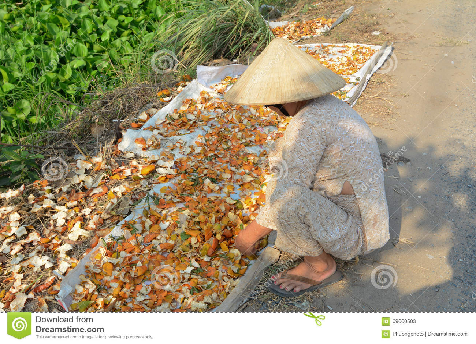 Una mujer mayor que trabaja en la casa en vietnam meridional foto de archivo editorial imagen - Trabaja en casa ...