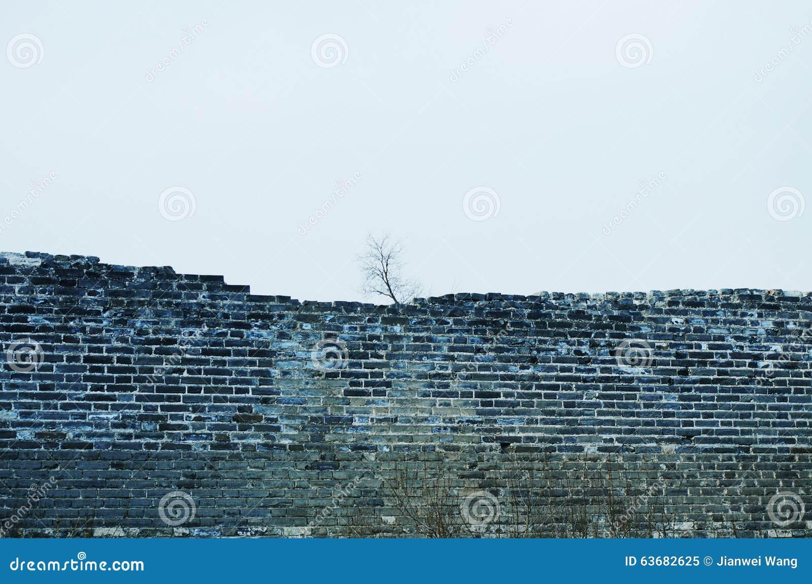 Una parete dilapidata