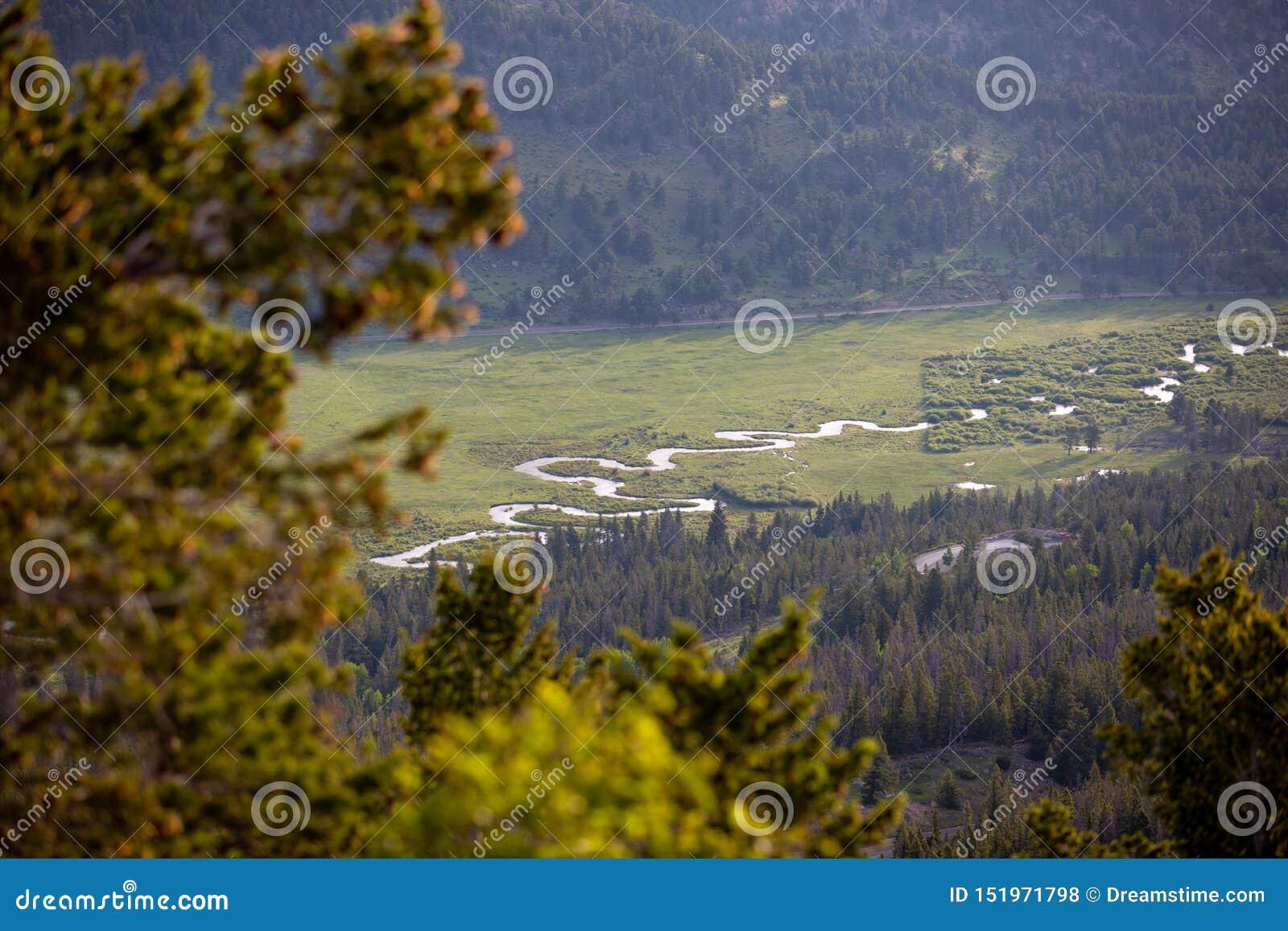 Una pequeños corriente y río que corren a través de un prado en un día de verano en Rocky Mountain National Park