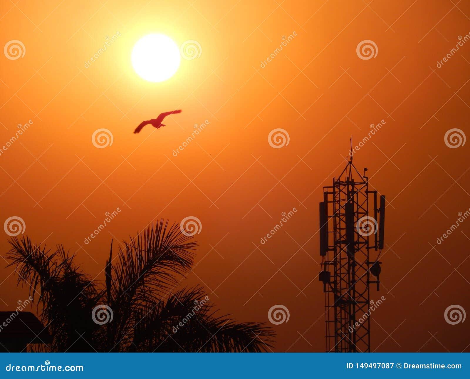 Una salida del sol hermosa en la India