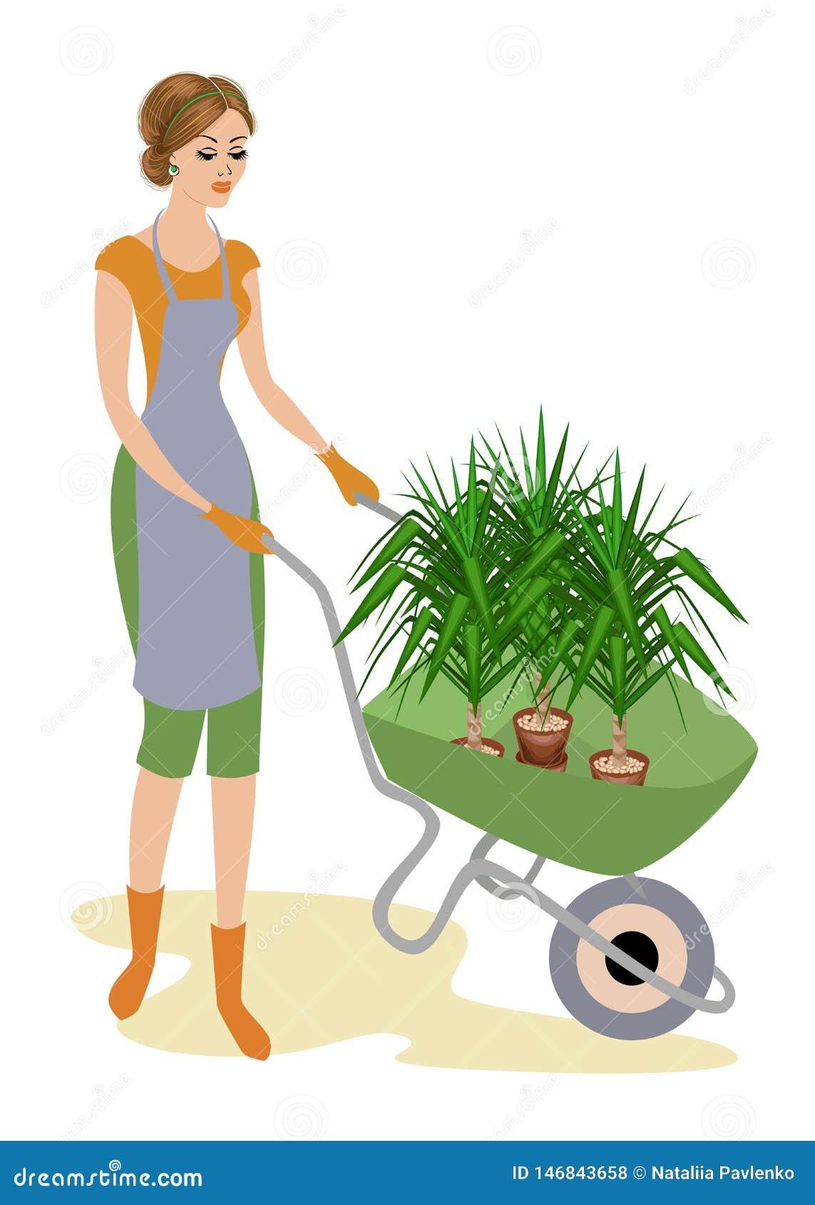 Una se?ora agradable en ropa de trabajo La muchacha está llevando una carretilla del jardín con las macetas con una planta de la