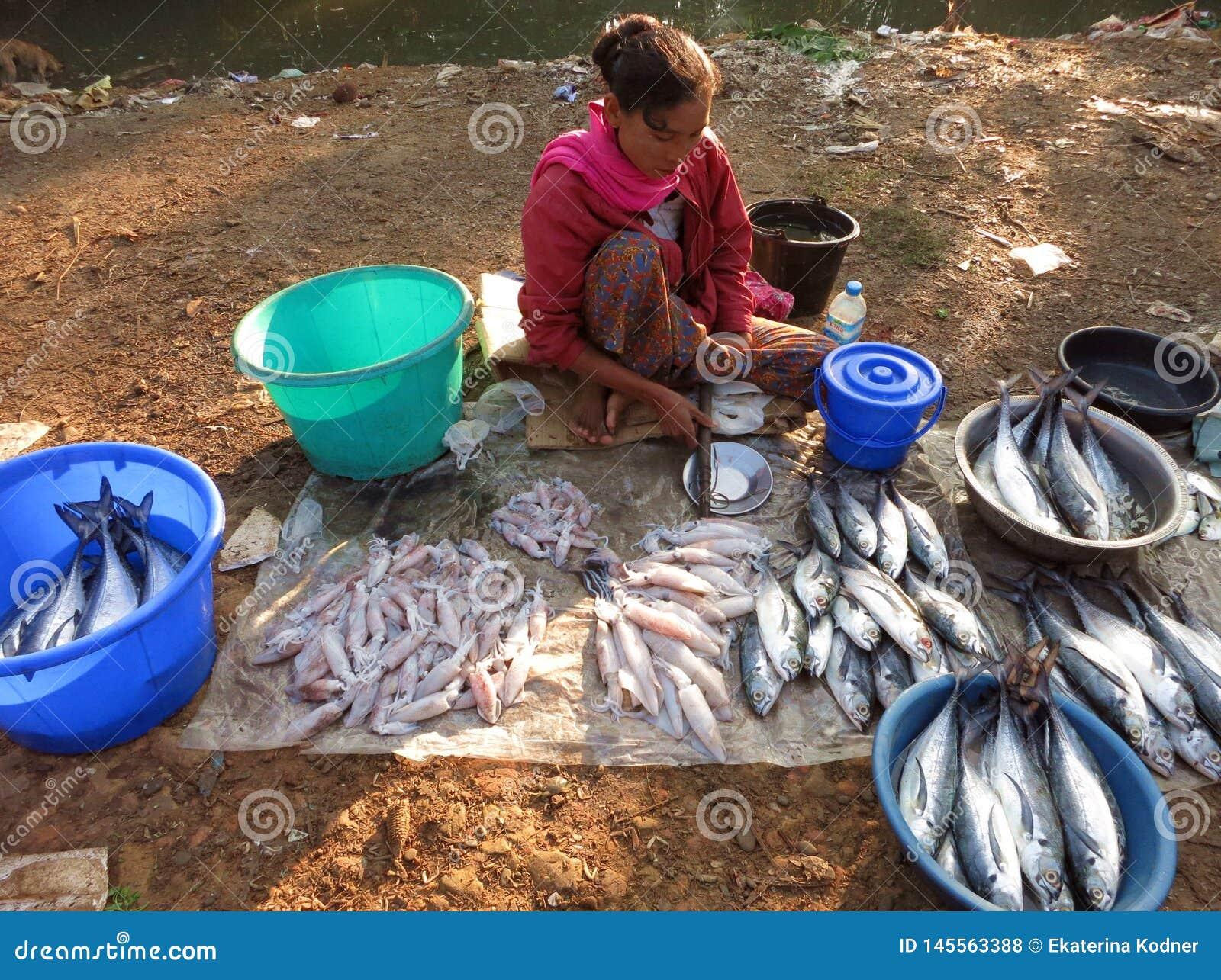 Una sentada en la mujer de tierra vende pescados en el mercado de la mañana cerca del río