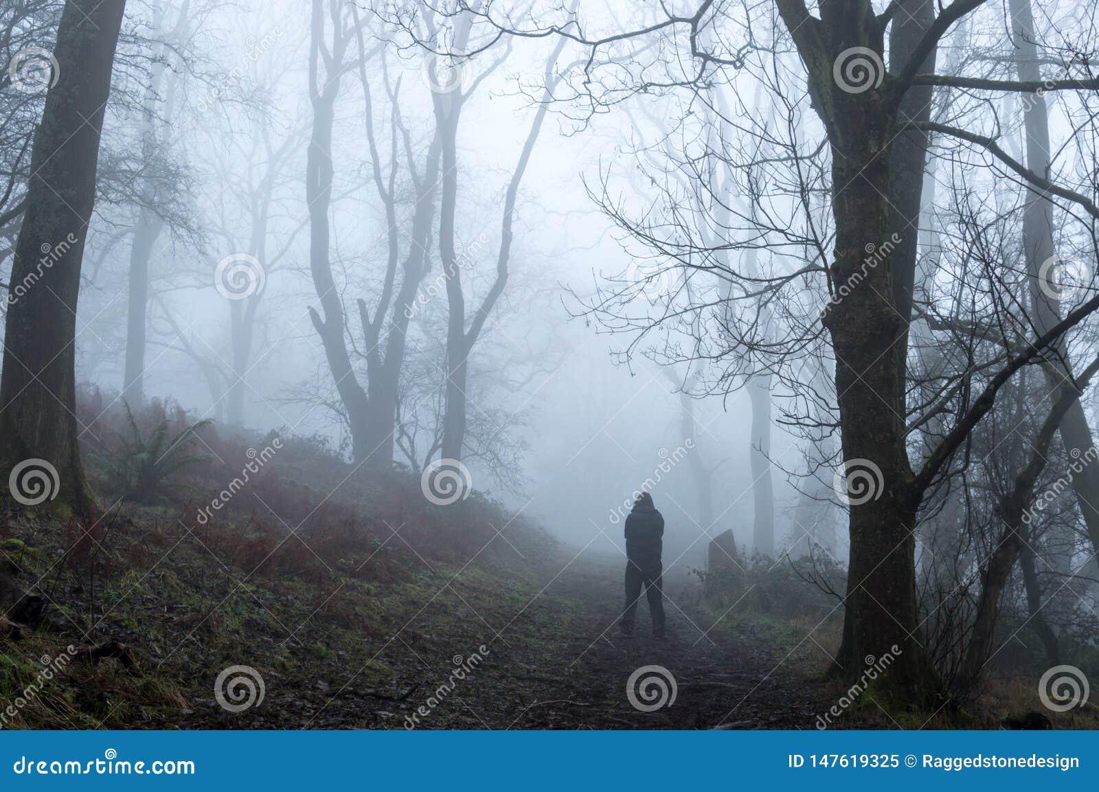 Una silueta fantasmagórica de una figura encapuchada situación en un bosque de niebla de los inviernos