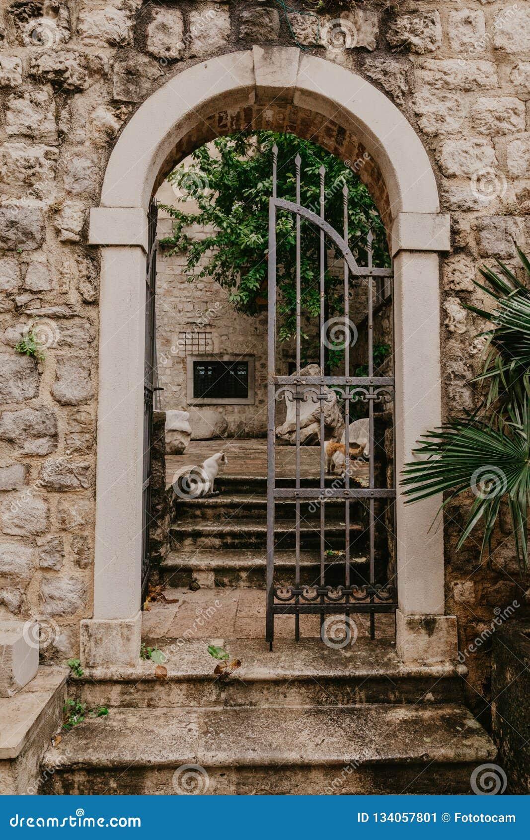 Una vieja puerta labrada que lleva al patio