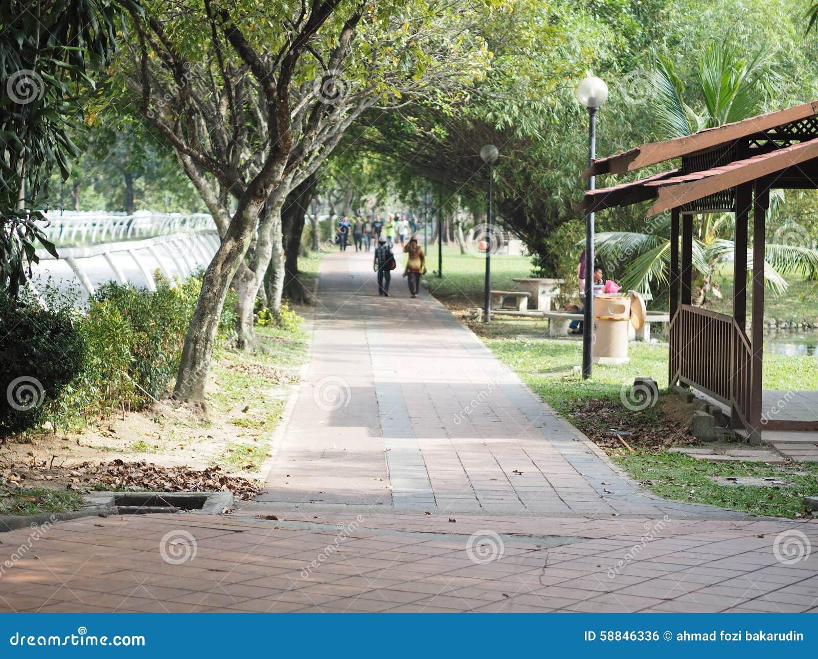 Una vista ad un parco ricreativo