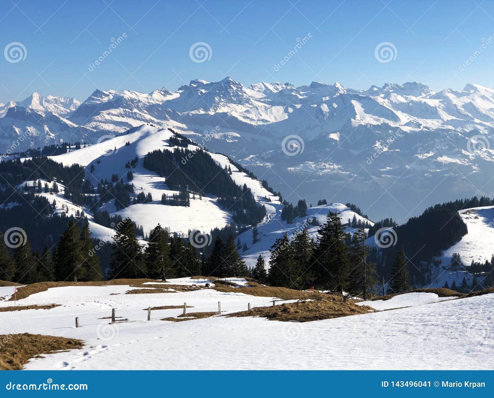 Una vista de la cubierta de nieve de la primavera en las montañas suizas de la montaña de Rigi
