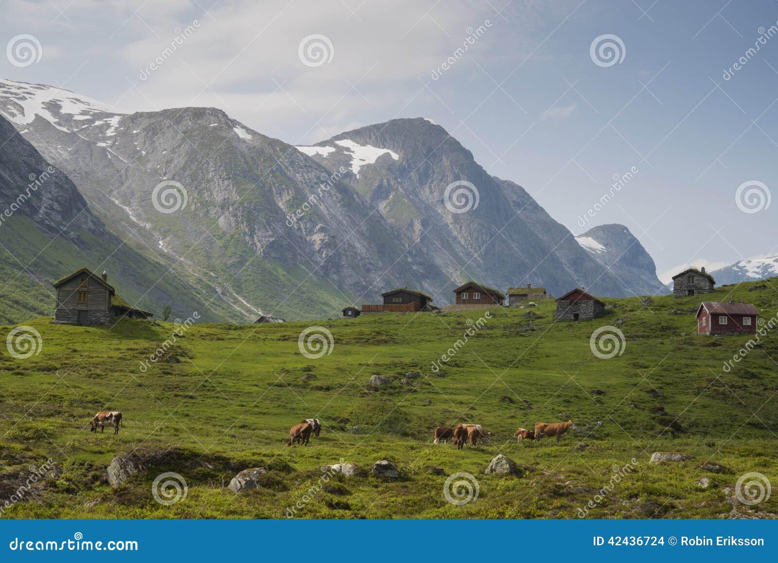 Una vista de la naturaleza de Noruega