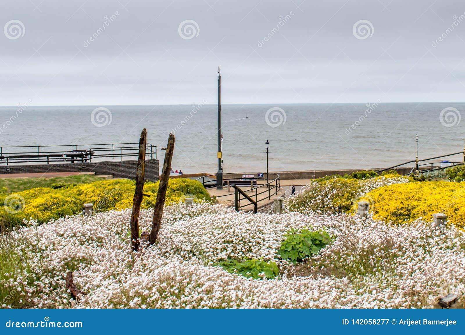 Una vista de la playa del hunstanton del jardín adyacente