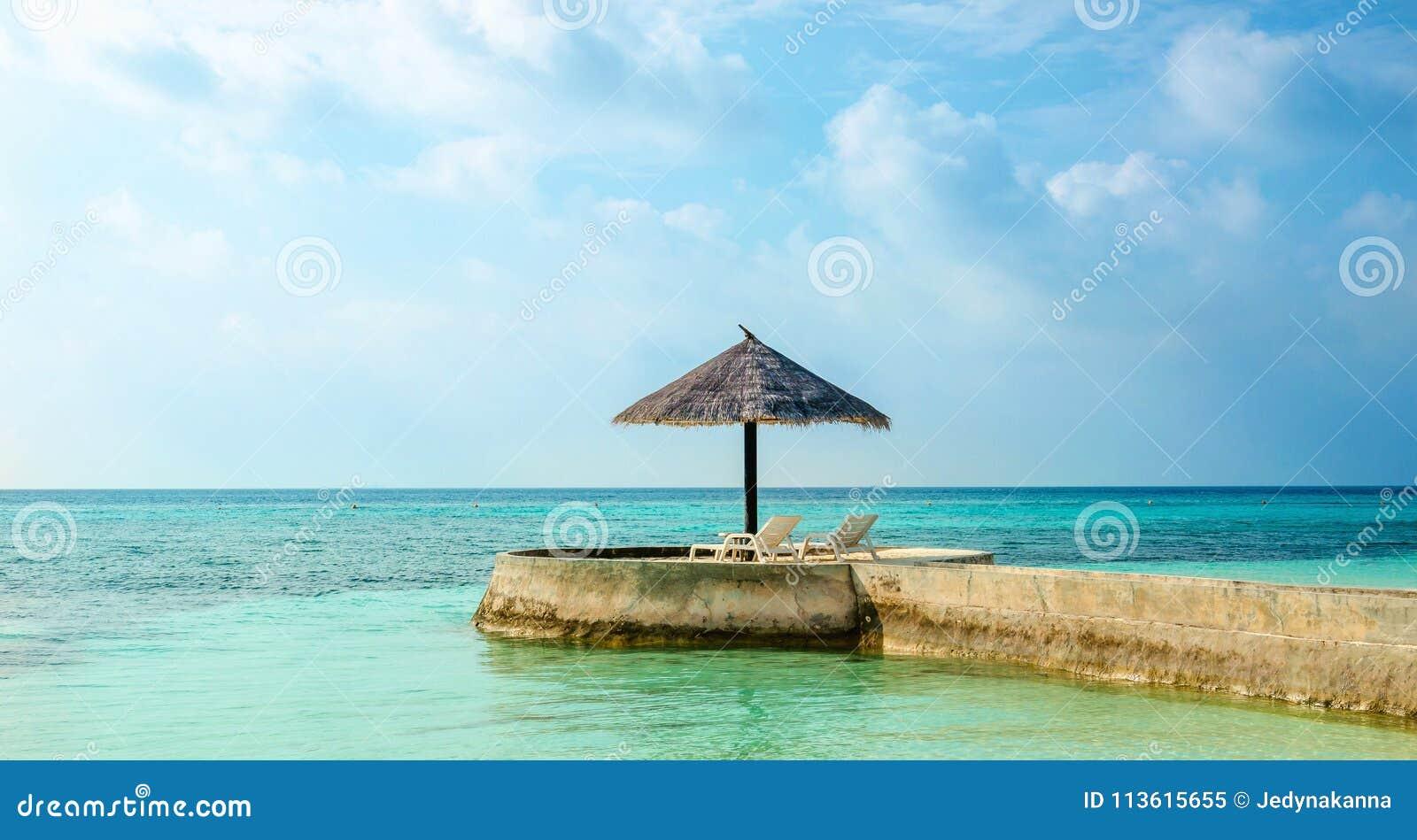 Una vista esotica di un ombrello della palma su un capo che trascura il mare, Maldive