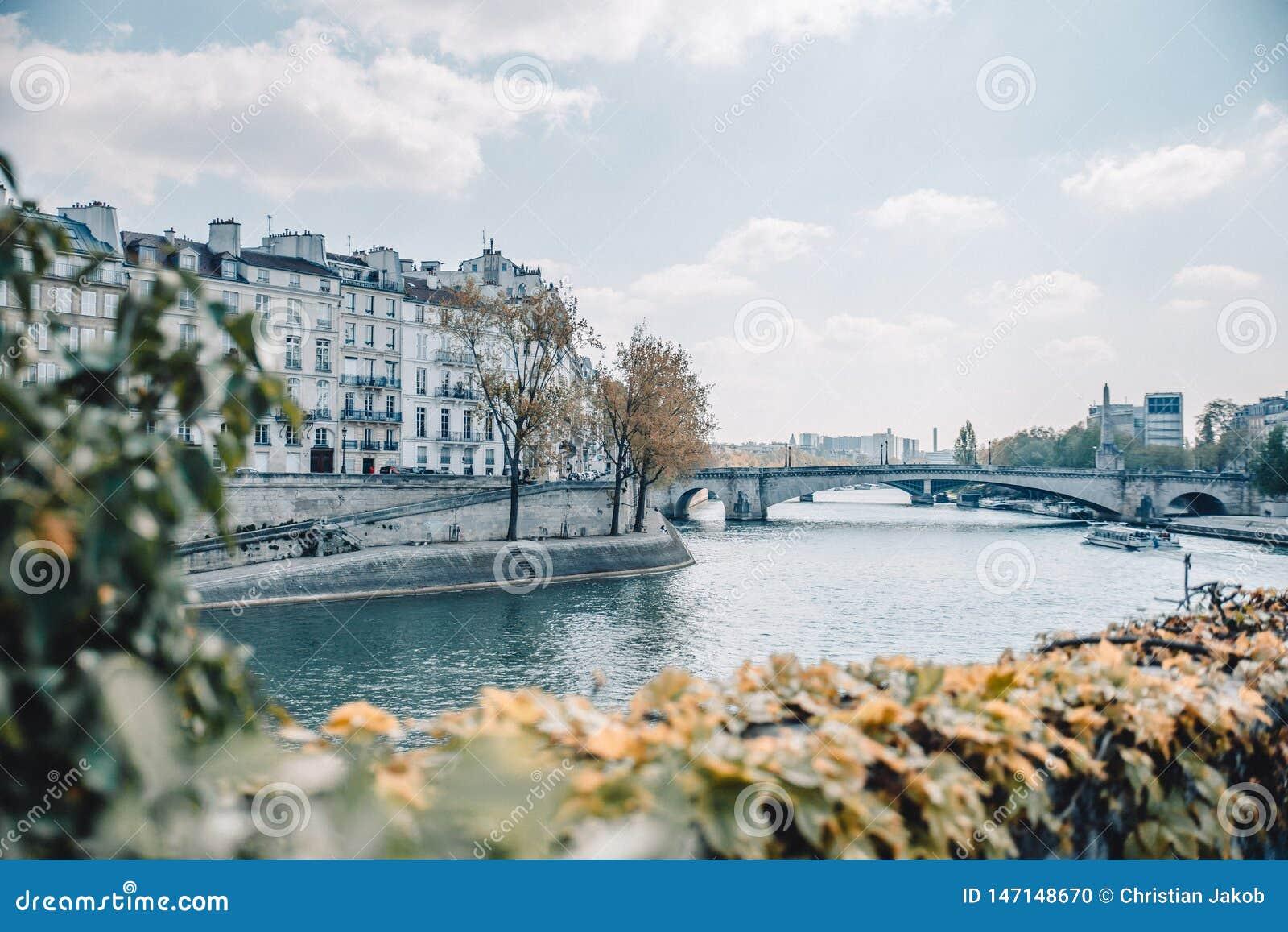 Una vista sopra la Senna a Parigi, Francia