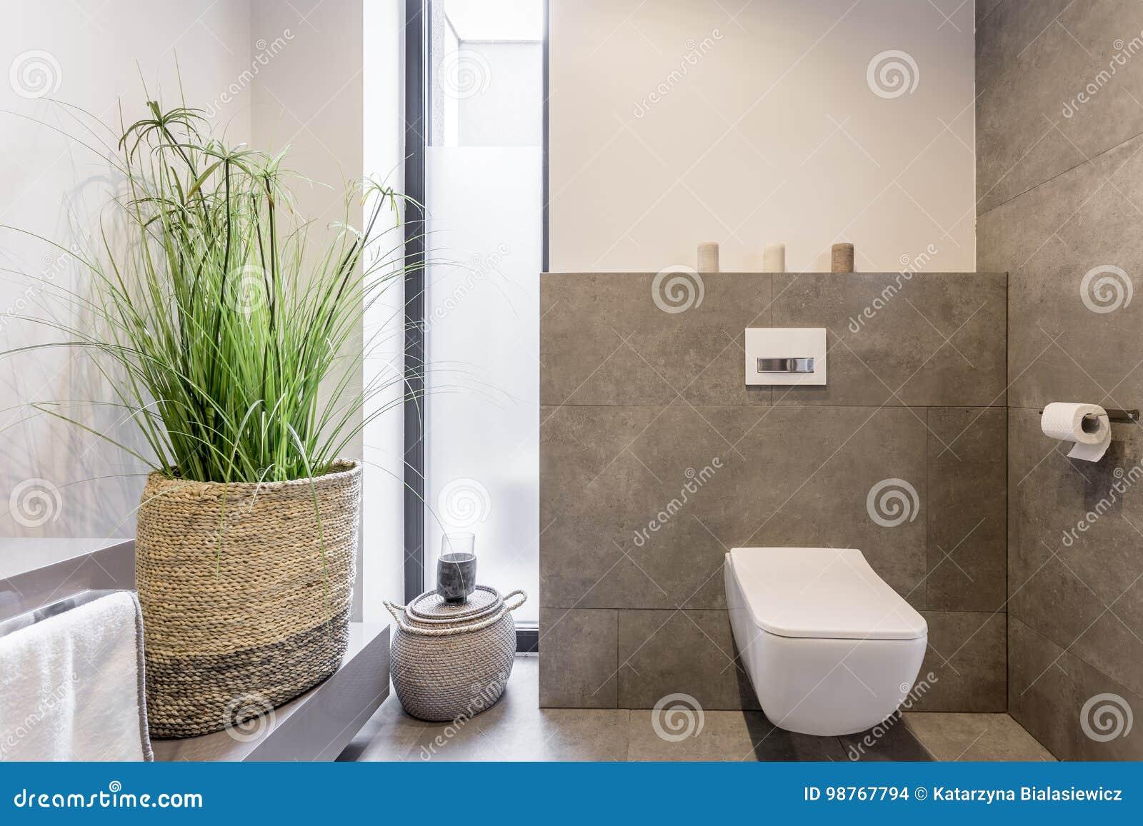 Unbedeutendes Toilettendesign Stockfoto - Bild von wohnung ...