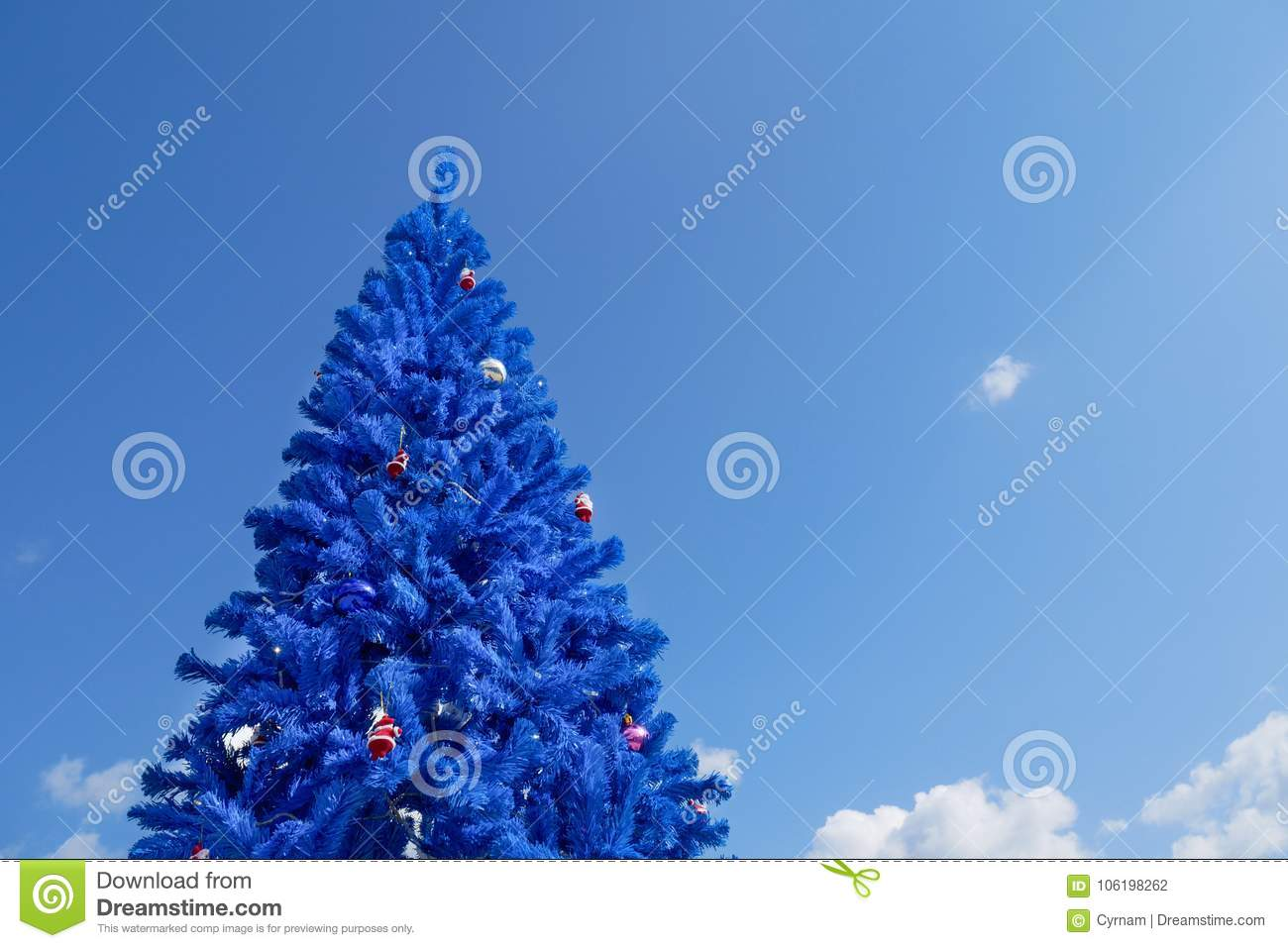 Unconventional Christmas Trees.Unconventional Blue Christmas Tree Stock Photo Image Of