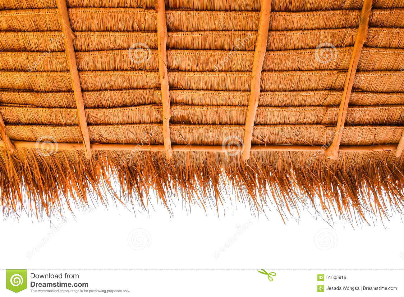Under view of thatched roof