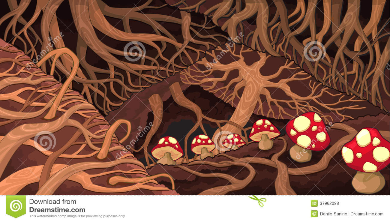 Underground With Roots And Mushrooms. Royalty Free Stock Photos ...
